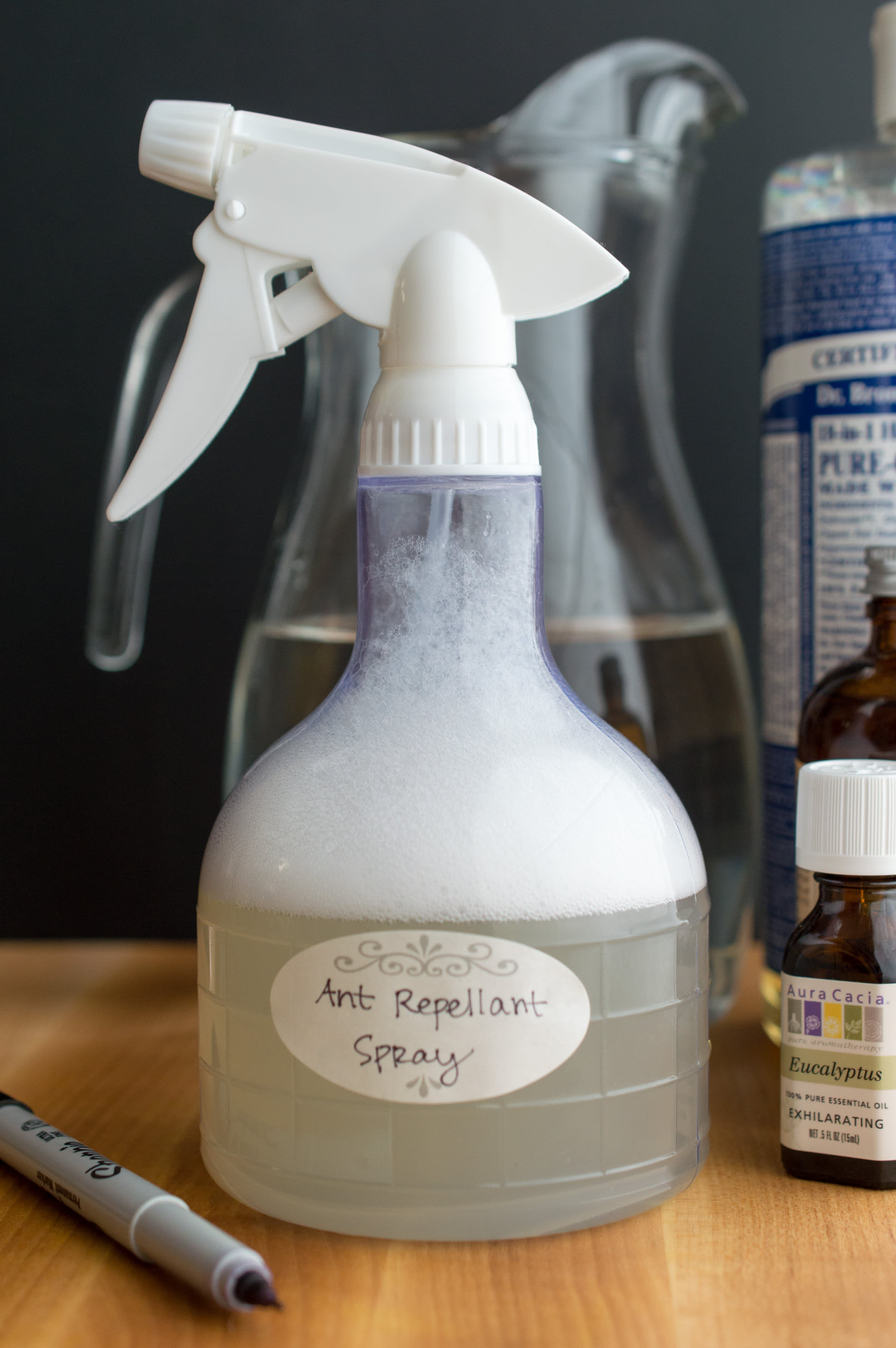 How To Make Ant Repellent Spray: gallery image 5