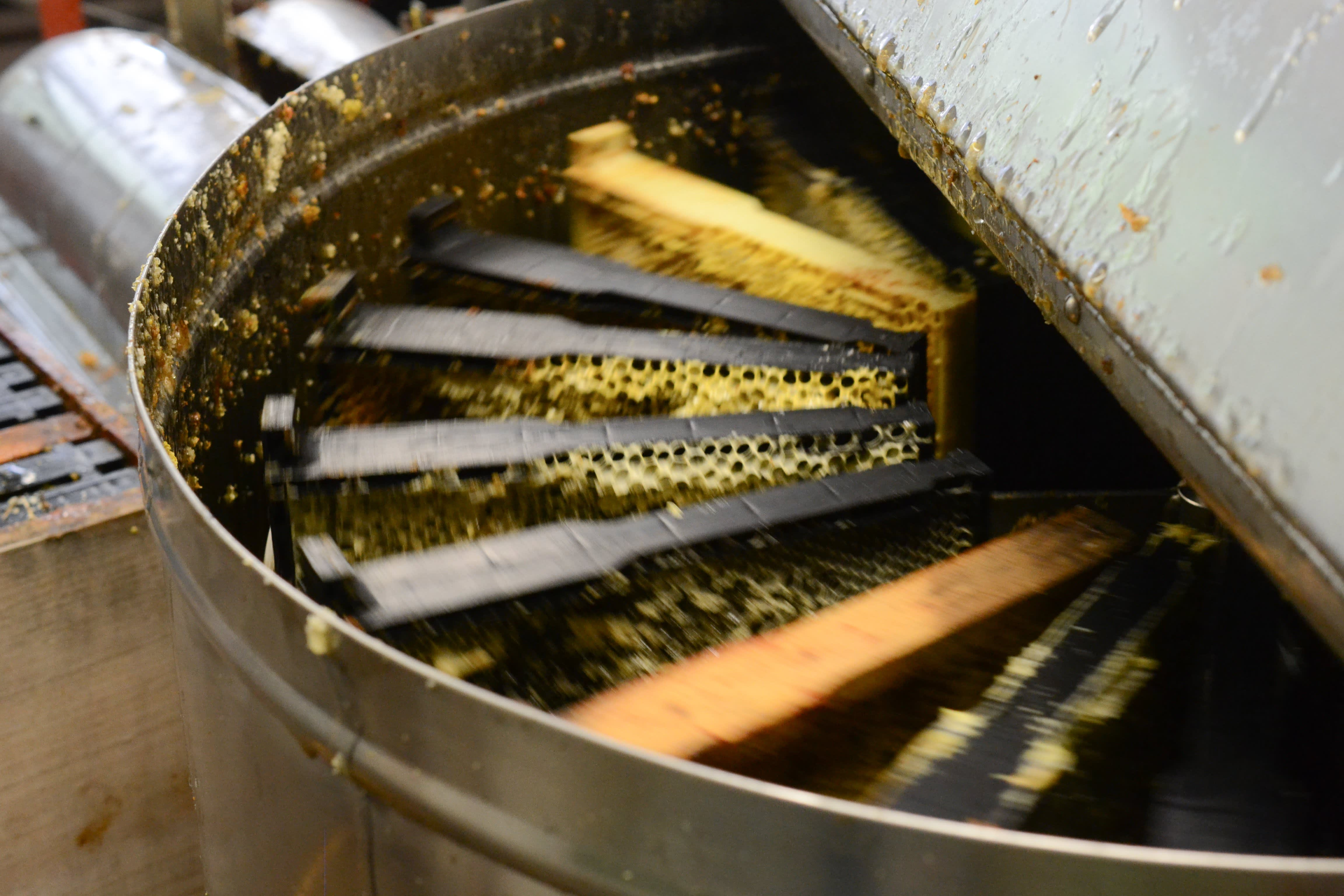 How a Migratory Beekeeper Harvests and Extracts Honey from His Fields in Oregon: gallery image 3