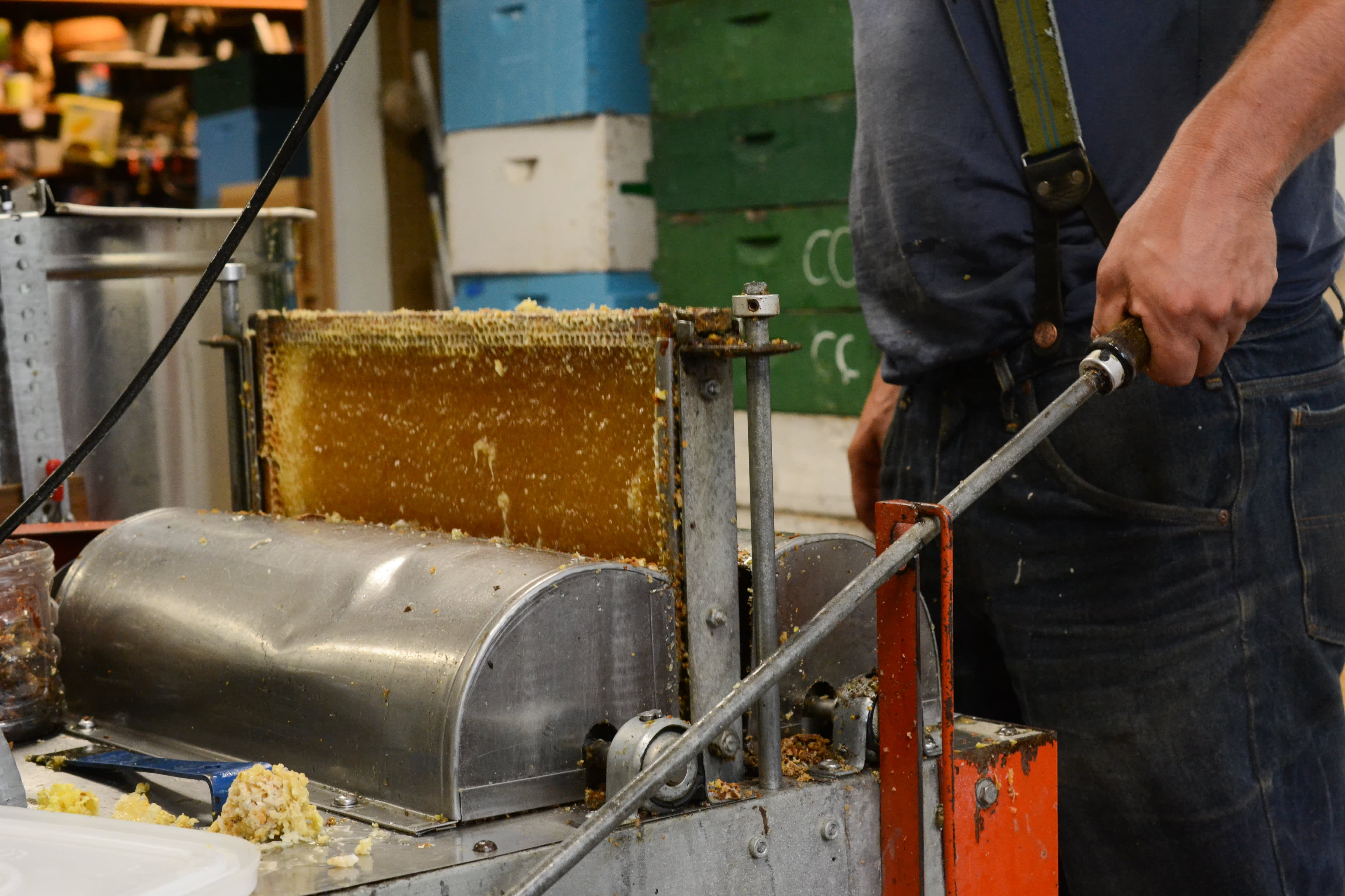 How a Migratory Beekeeper Harvests and Extracts Honey from His Fields in Oregon: gallery image 4