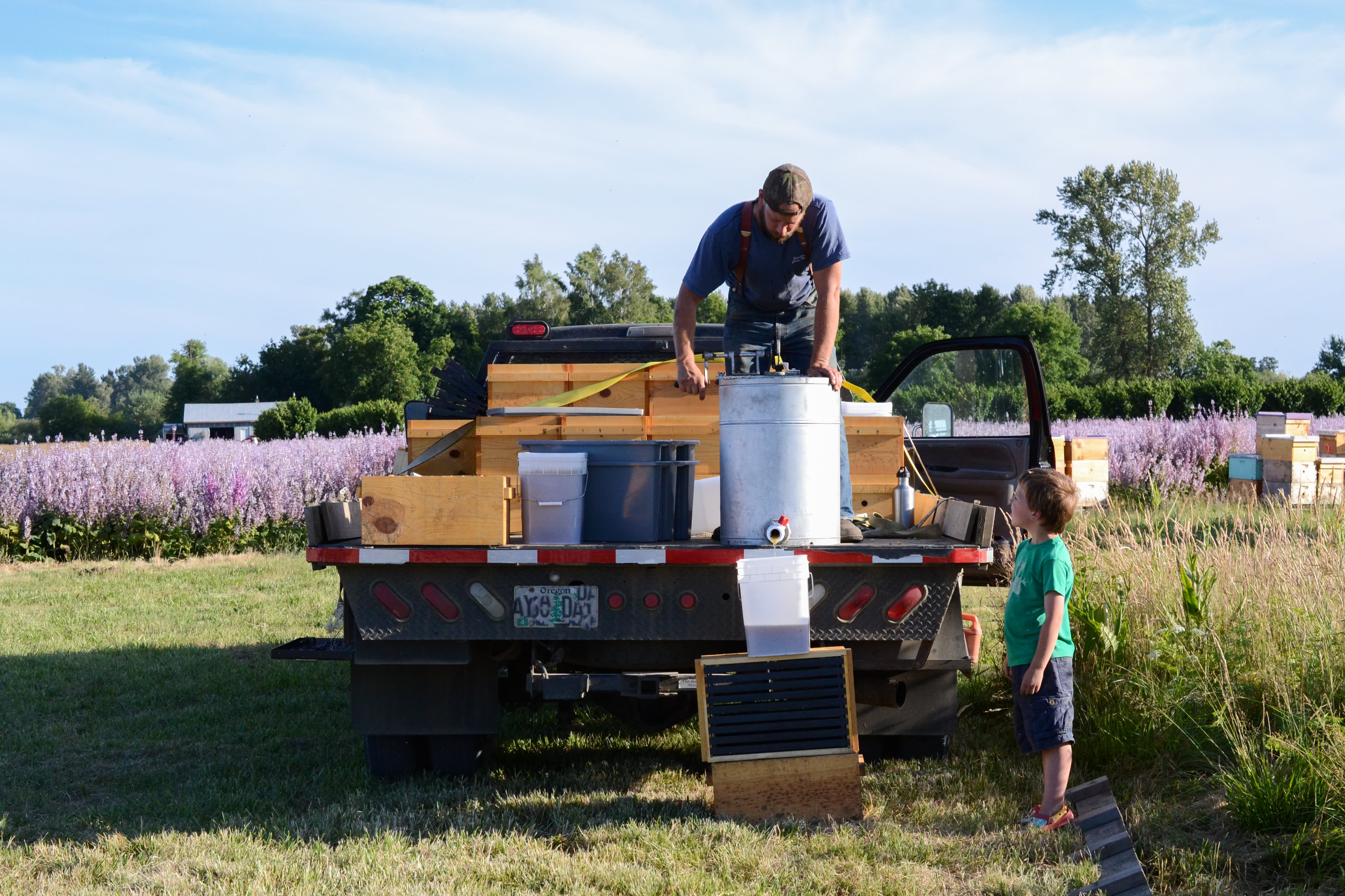 How a Migratory Beekeeper Harvests and Extracts Honey from His Fields in Oregon: gallery image 8