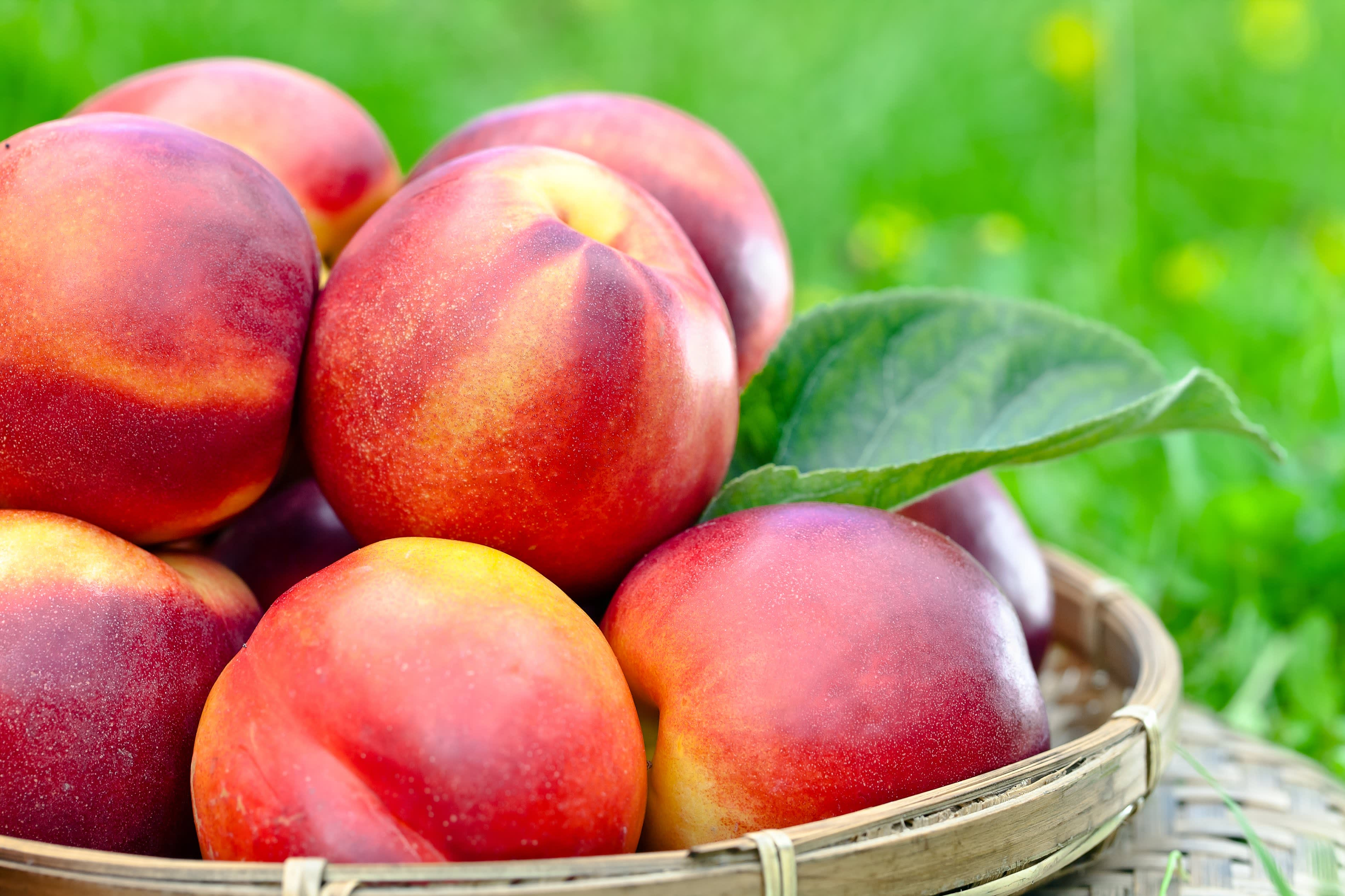 Nectarines in a basket