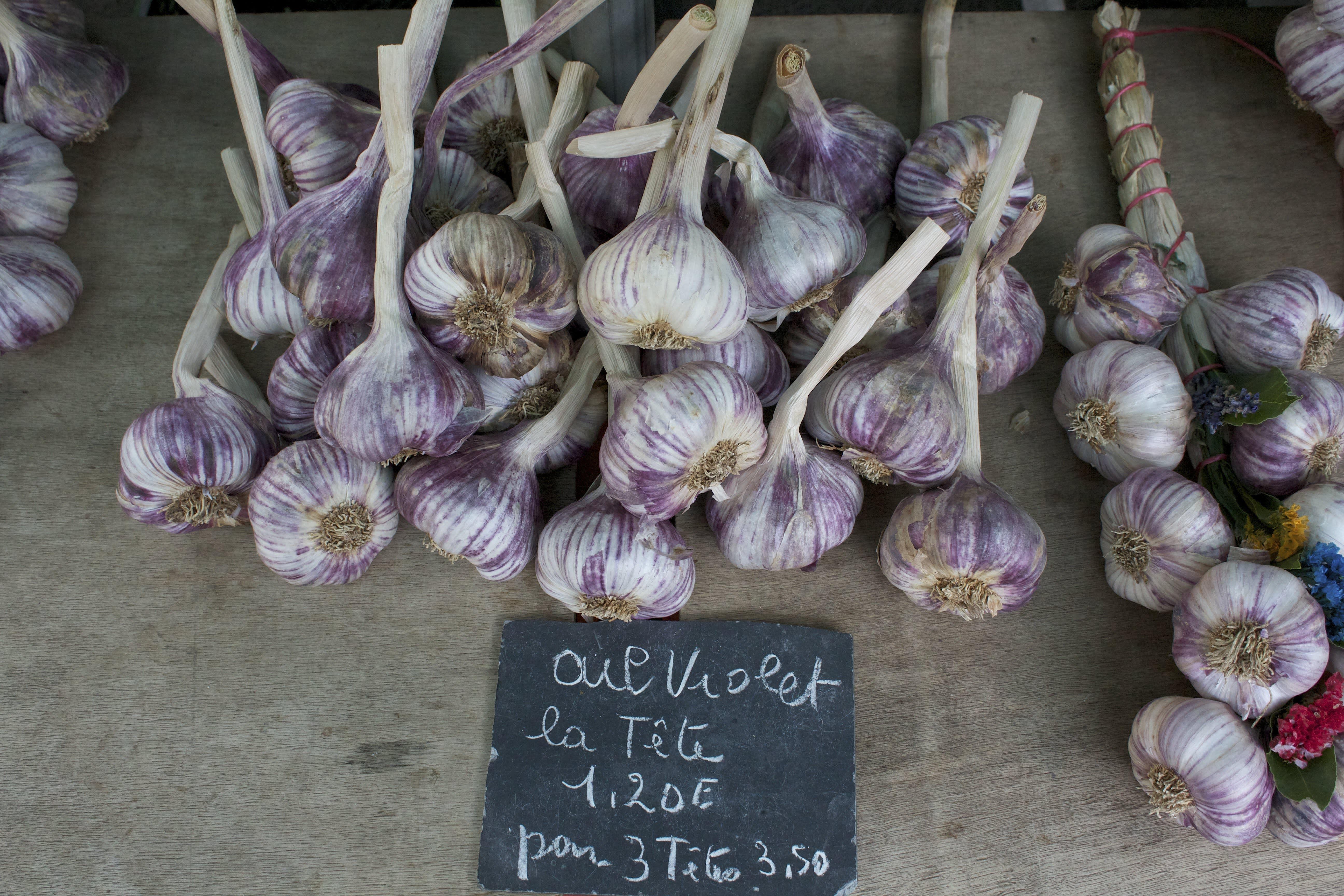 Garlic at a French Market