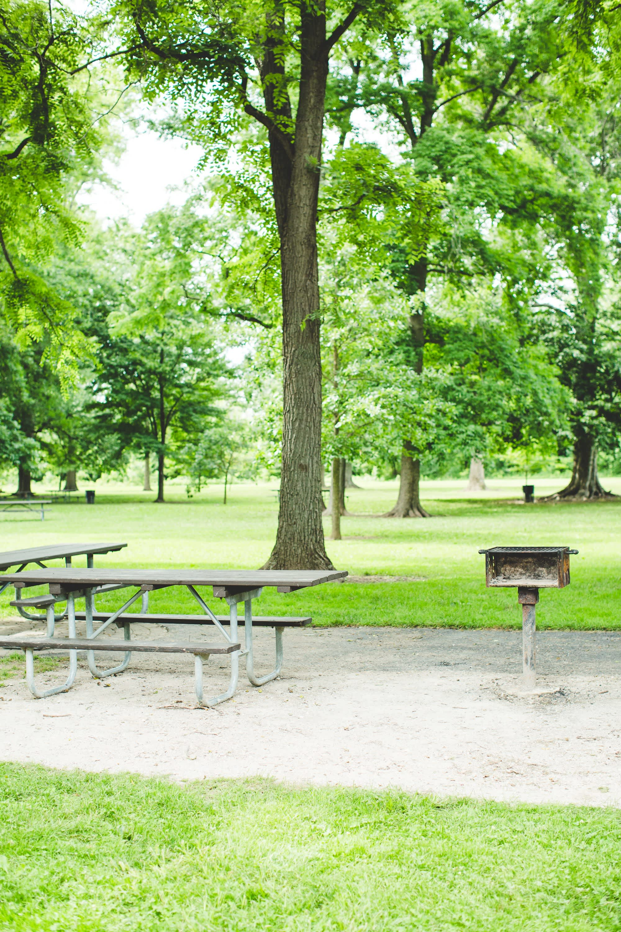 Park Grill and Picnic Benches