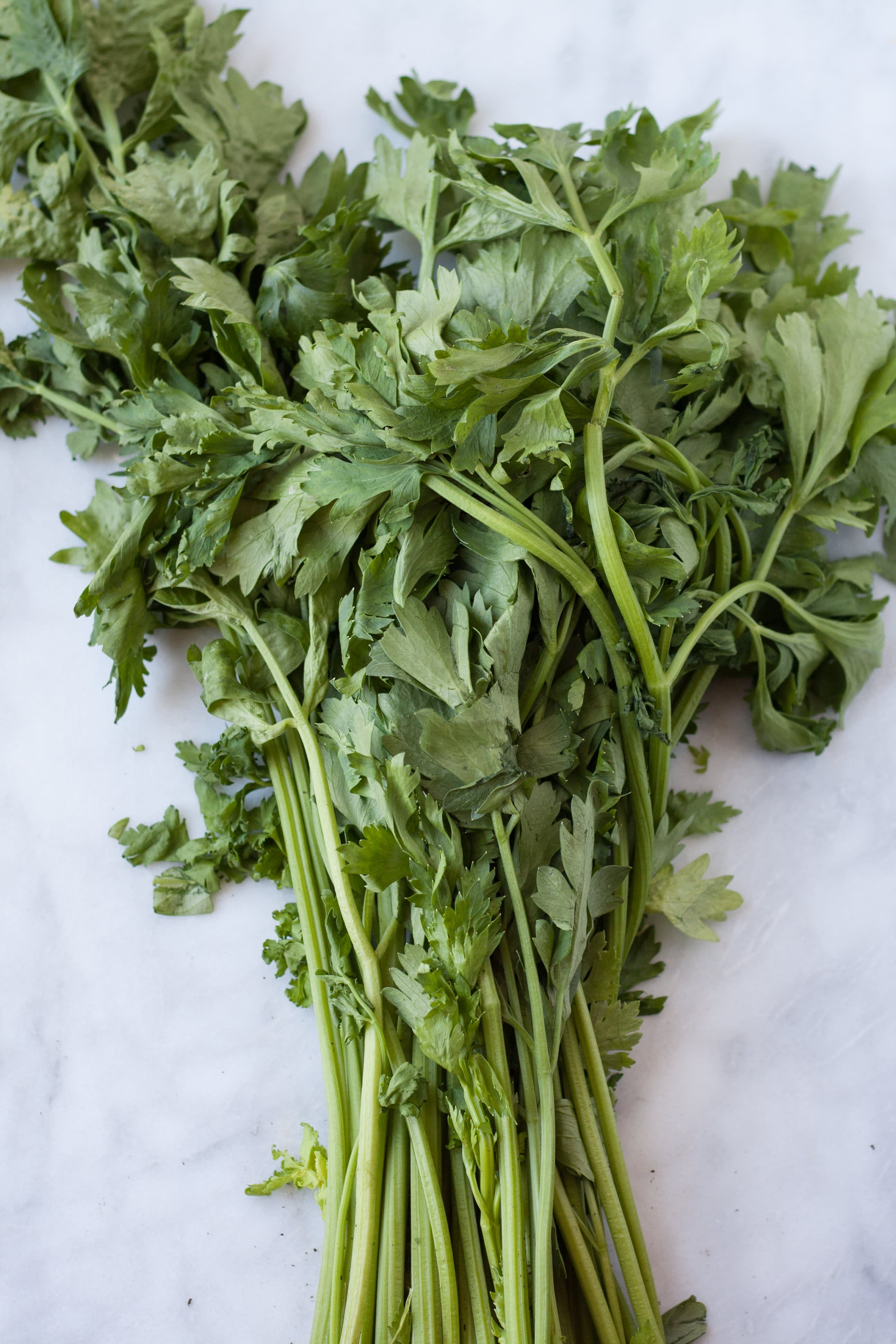A Visual Guide to 10 Varieties of Asian Greens: gallery image 9