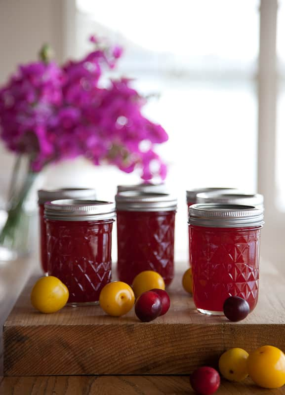 Recipe: Wild Plum Jam