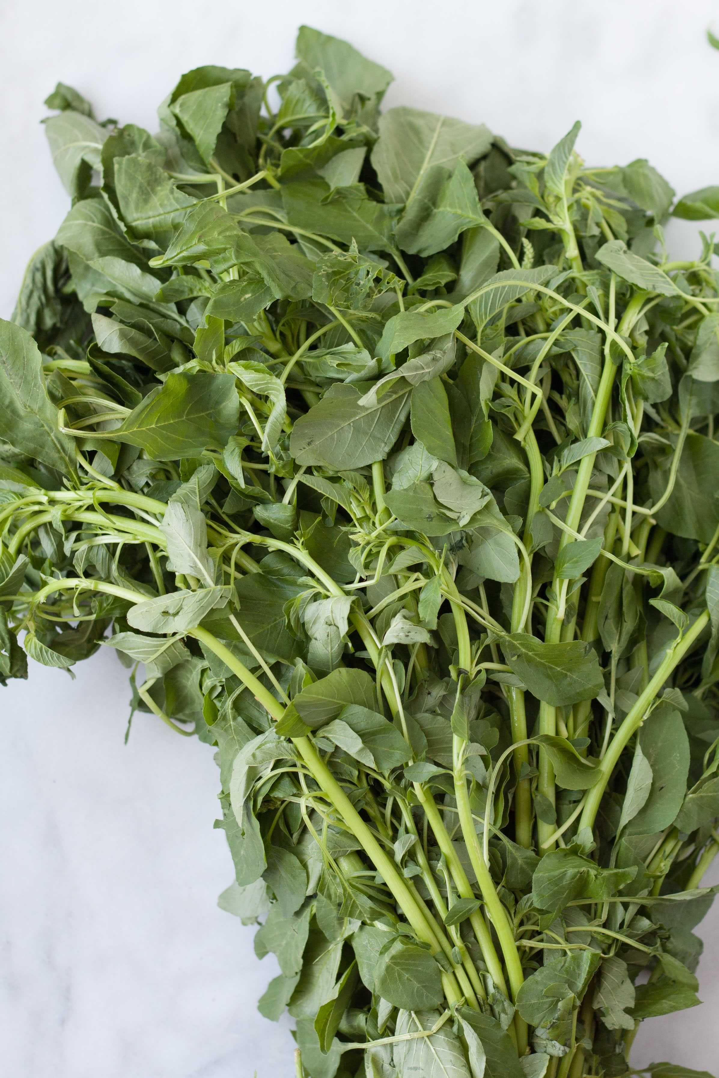 A Visual Guide to 10 Varieties of Asian Greens: gallery image 11