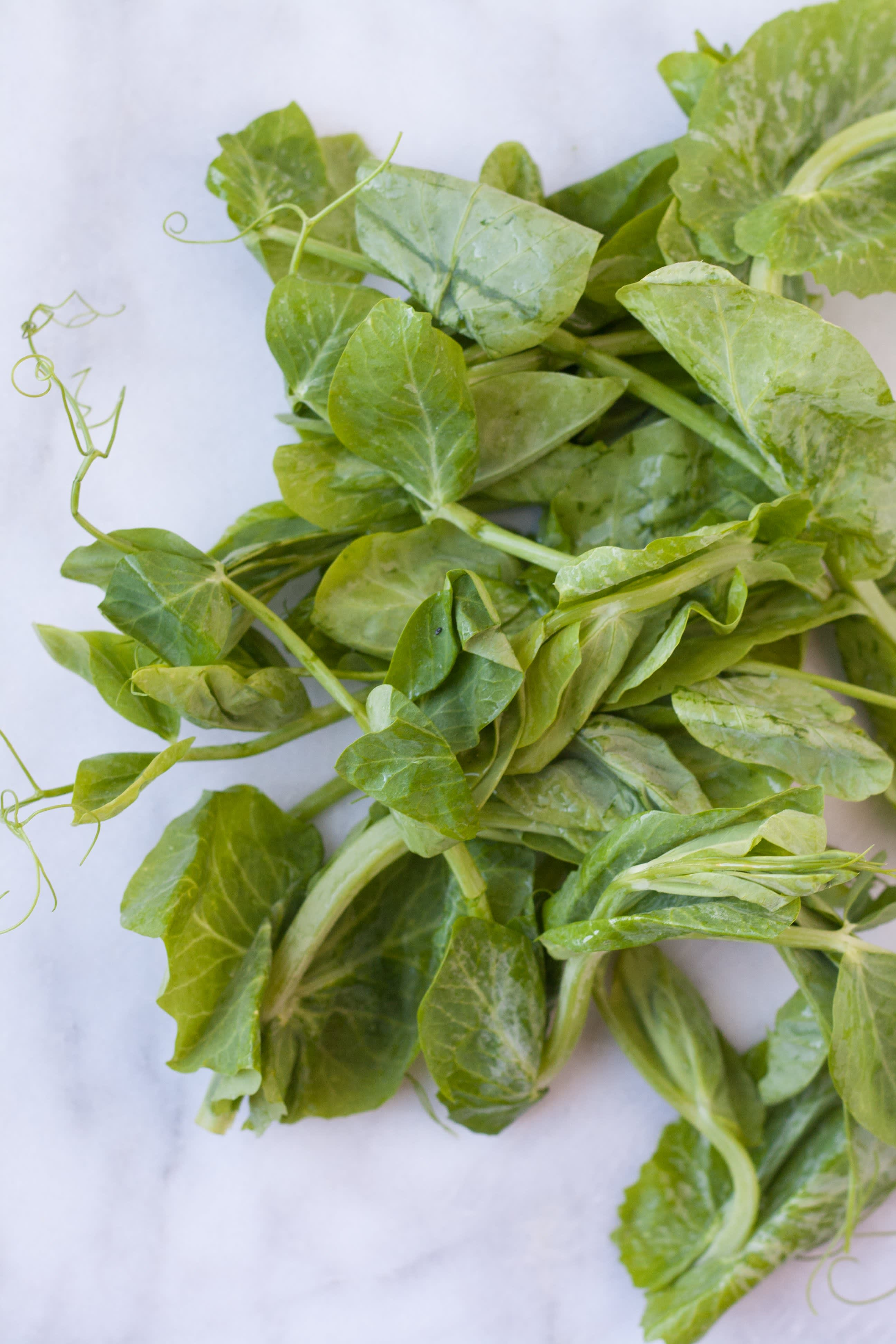 A Visual Guide to 10 Varieties of Asian Greens: gallery image 4