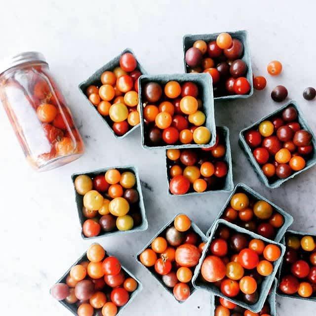 Vodka Tomatoes