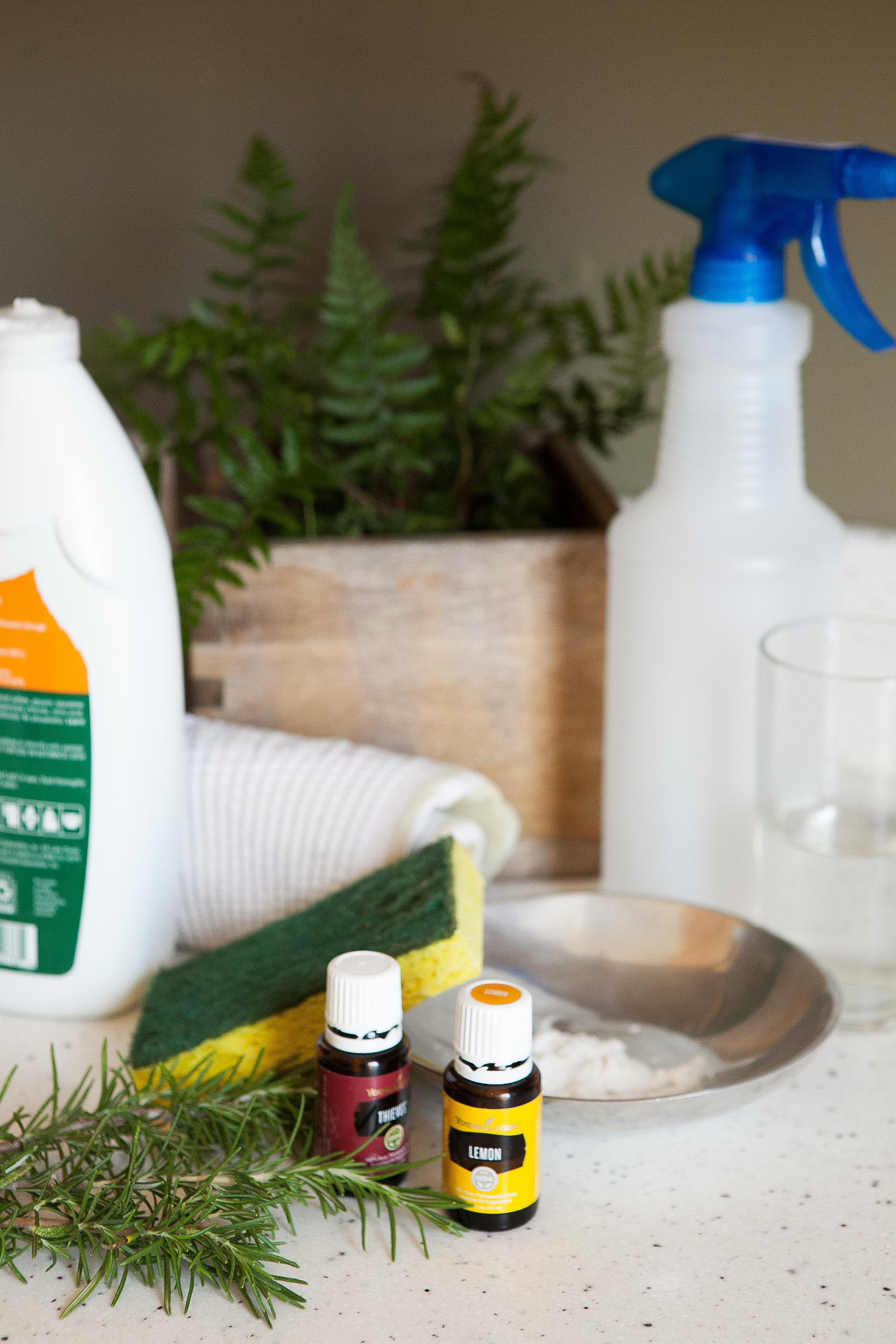 How To Make a Natural Kitchen Degreaser: gallery image 2