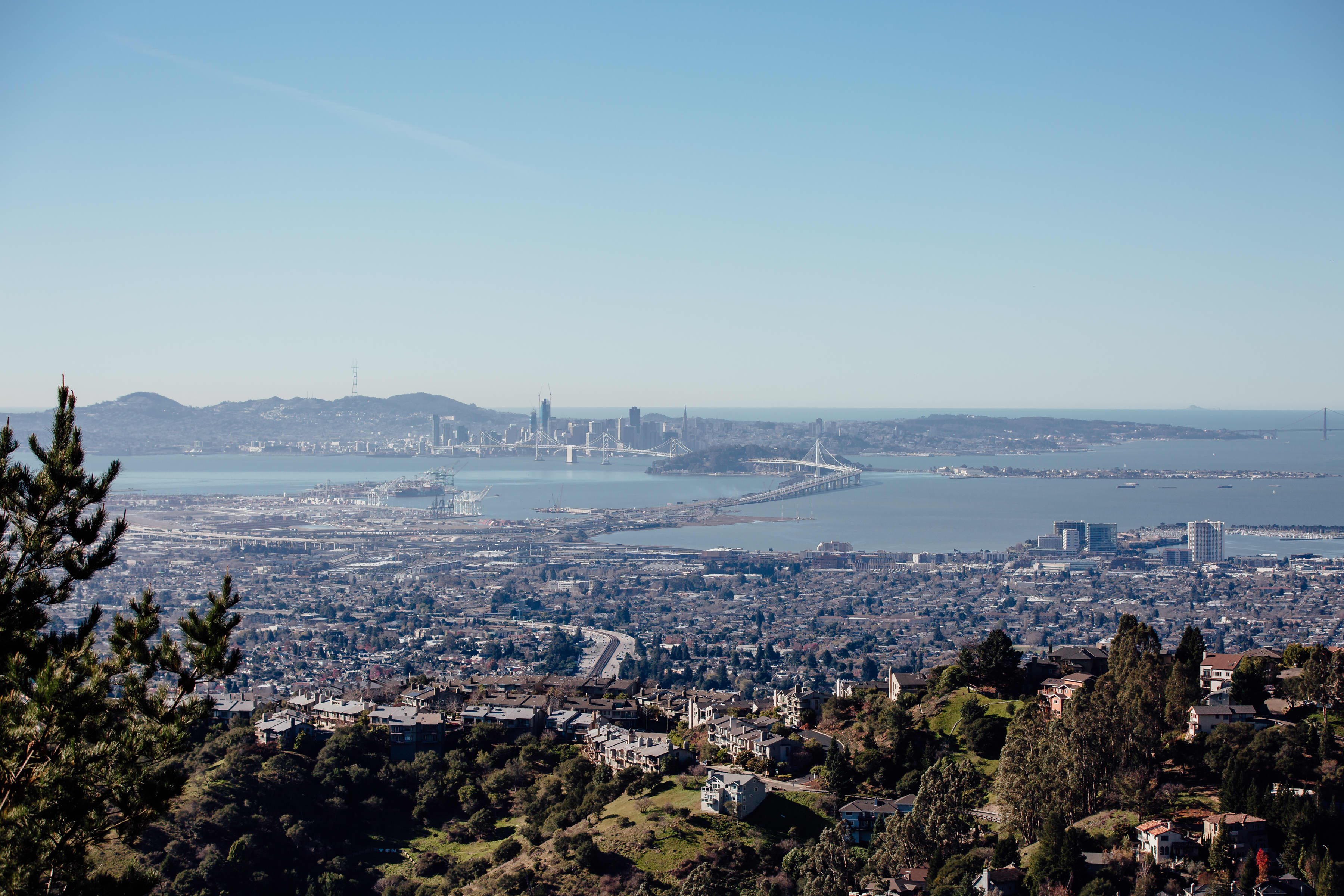 A Love Letter to Oakland, California: gallery image 2