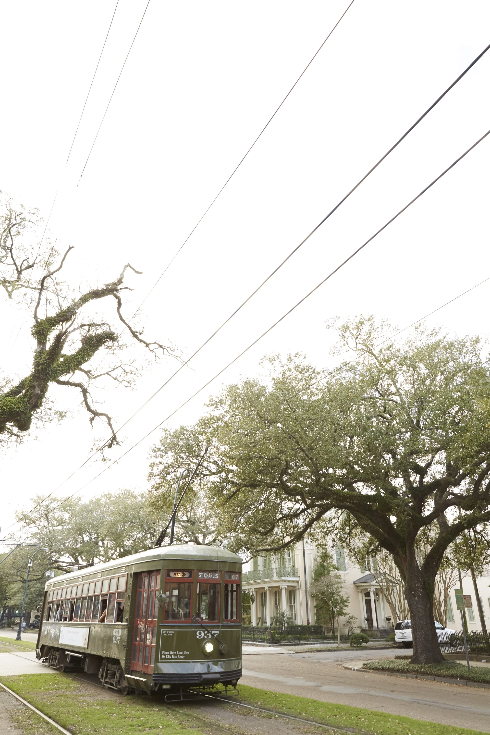 A Love Letter to New Orleans from the Owner of Its Most Famous Eatery: gallery image 3