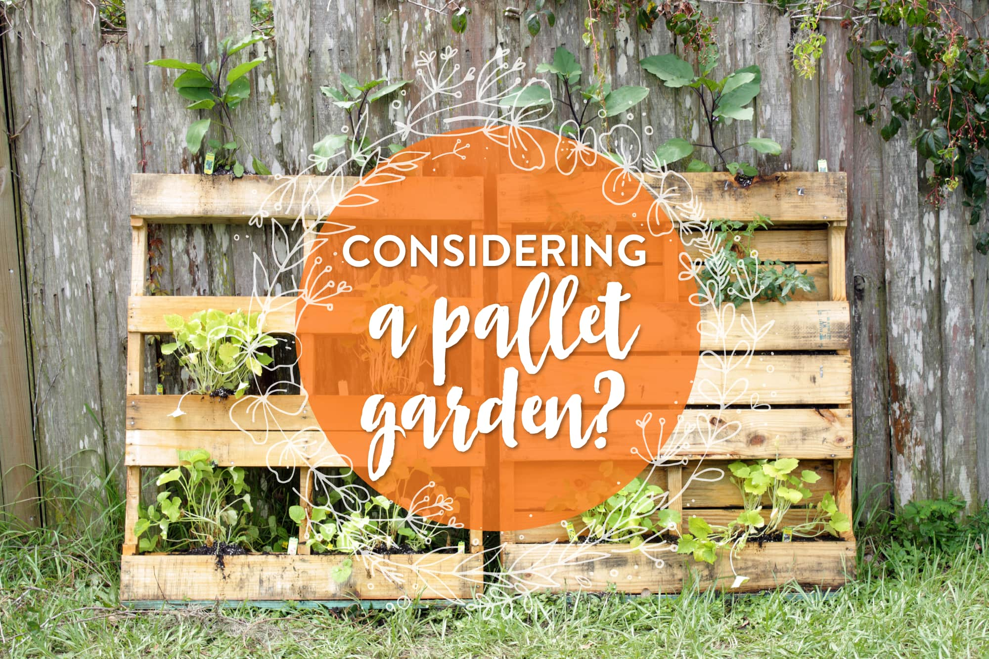 What You Should Know About Pallet Gardening Kitchn