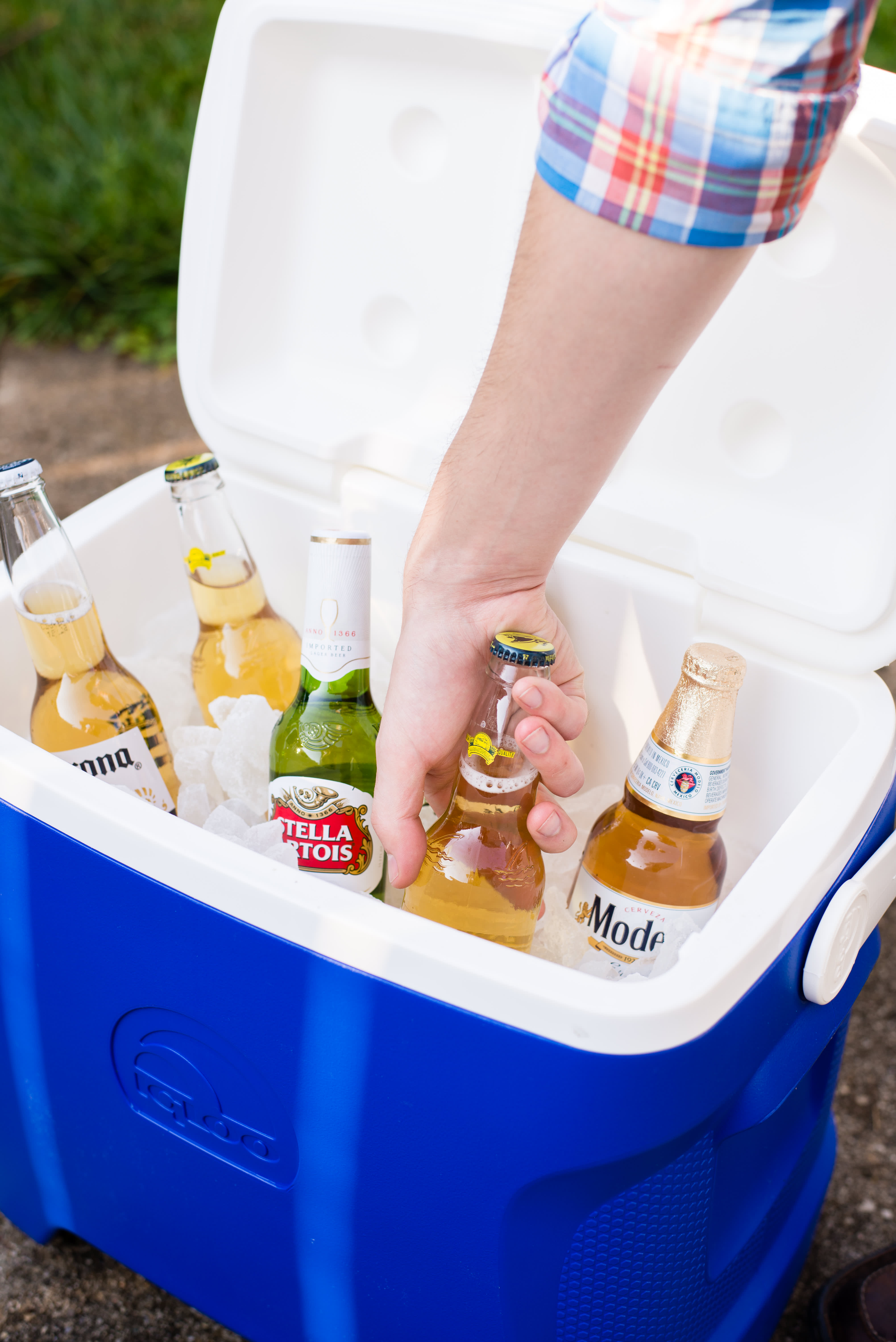 How To Clean Your Cooler: gallery image 1