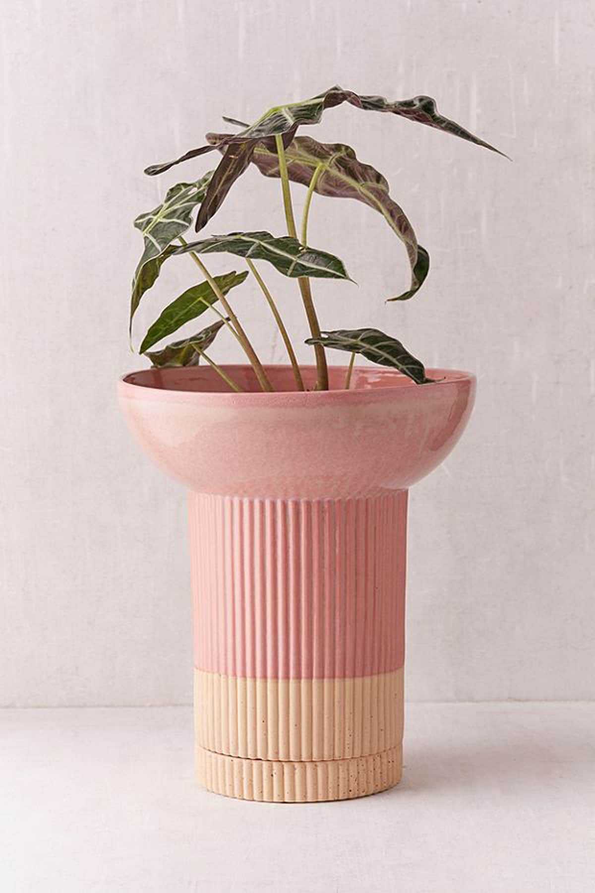 Urban Outfitters Just Launched Its Home Line for Spring Line — And It's Incredible: gallery image 4