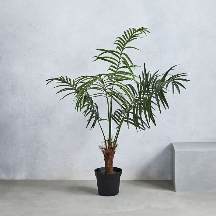 A Very Real Guide to Buying Very Fake Plants: gallery image 6
