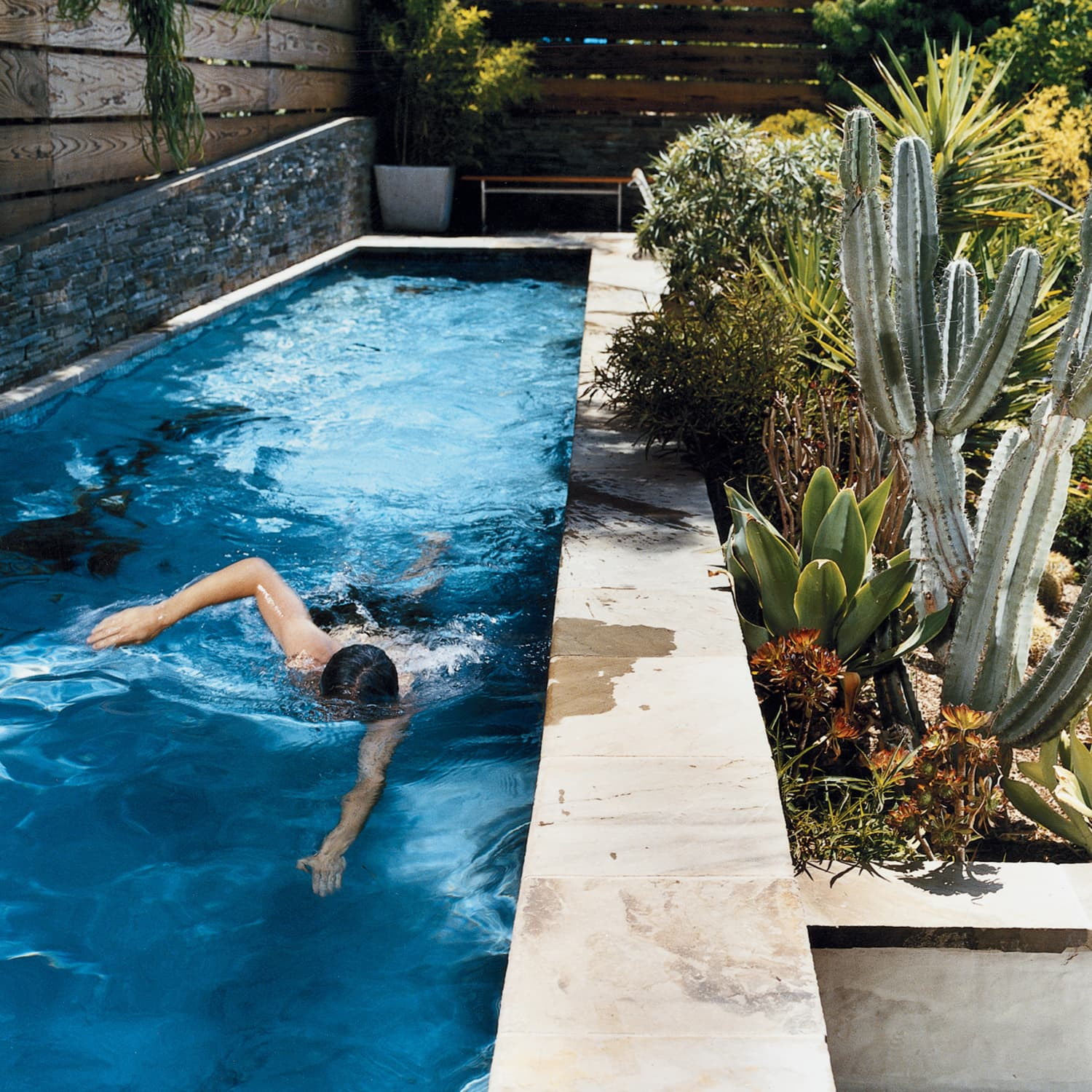 Beautiful Modern Lap Pools: Photos and Inspiration ...