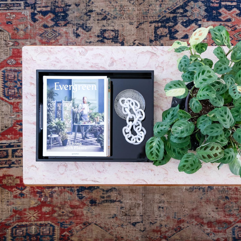 Prayer Plants - Maranta Care | Apartment Therapy