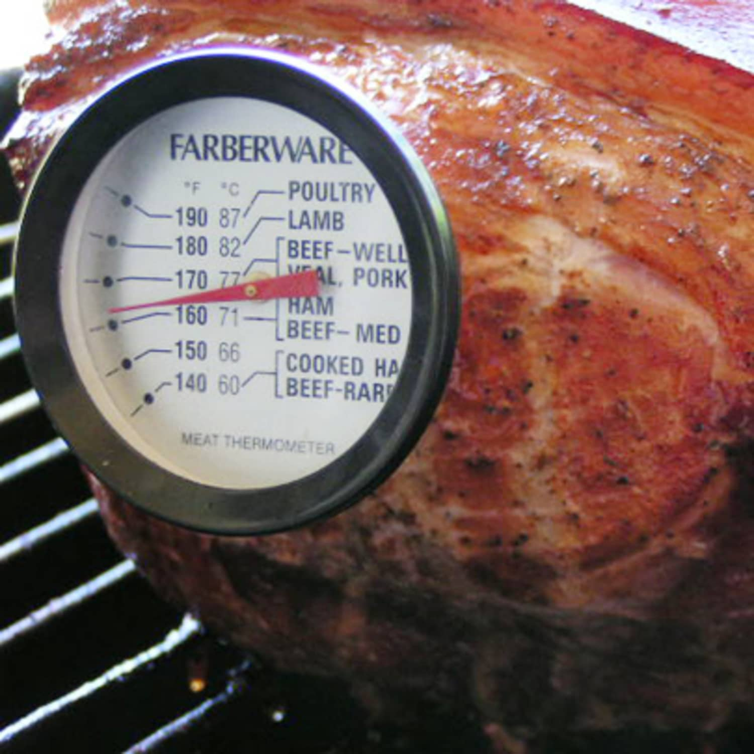 How To: Calibrate Your Meat Thermometer | Kitchn
