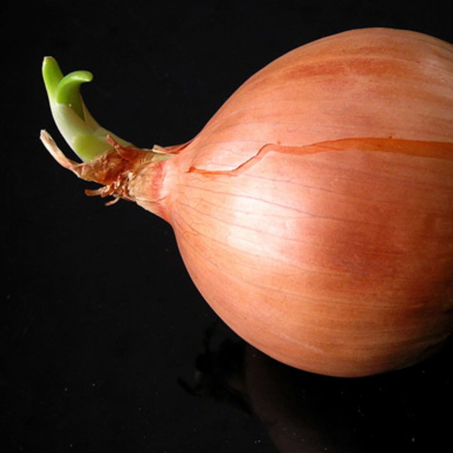 Raw to Sweet: How to Change the Intensity of Onions | Kitchn