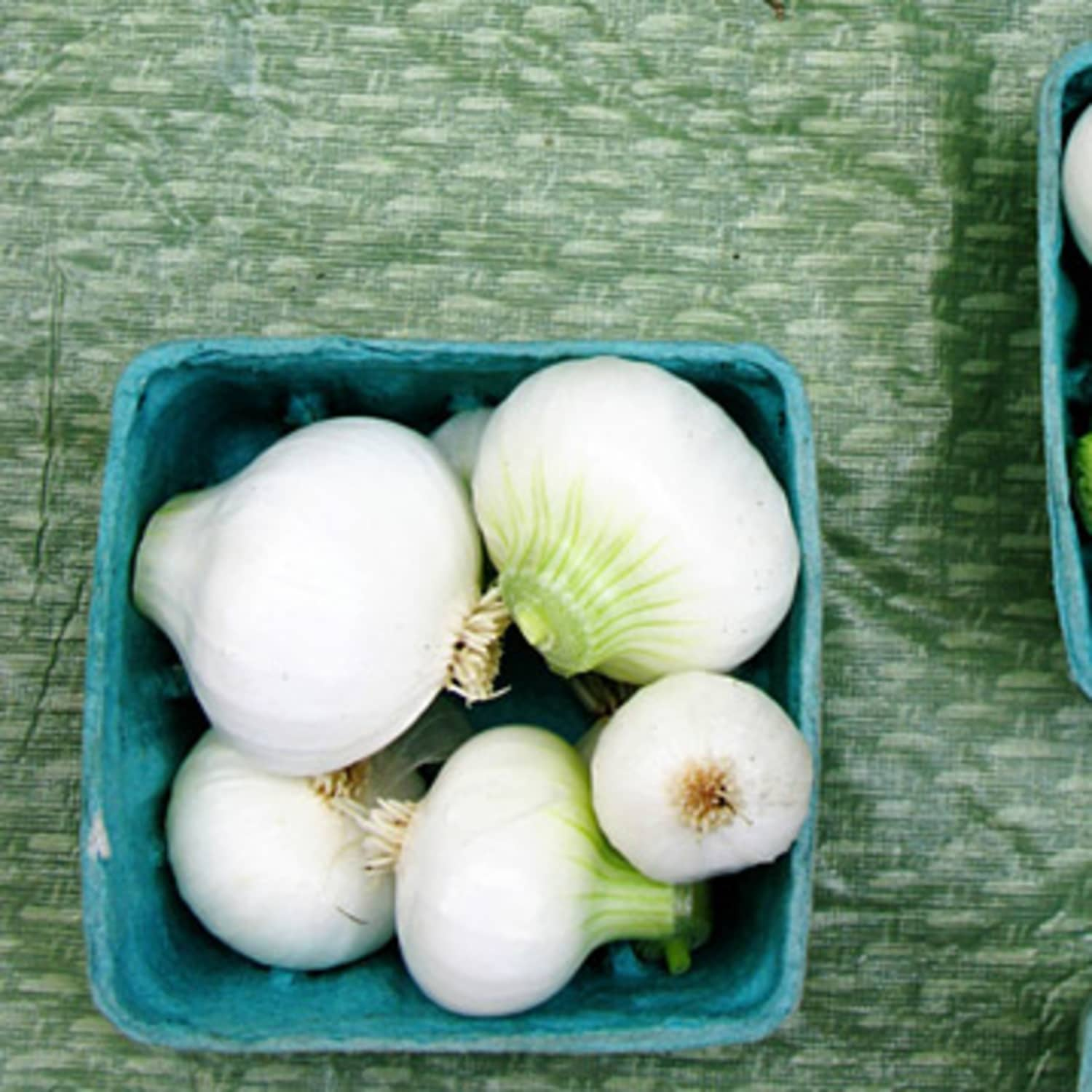 What's the Difference? Yellow, White, and Red Onions | Kitchn