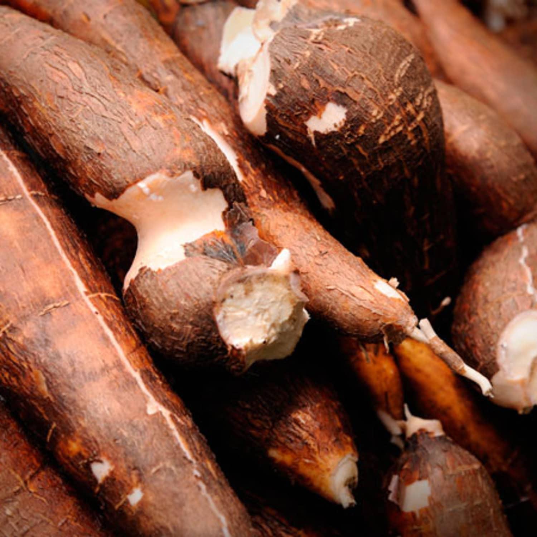A Staple Starch: Cassava, Manioc & Yuca | Kitchn