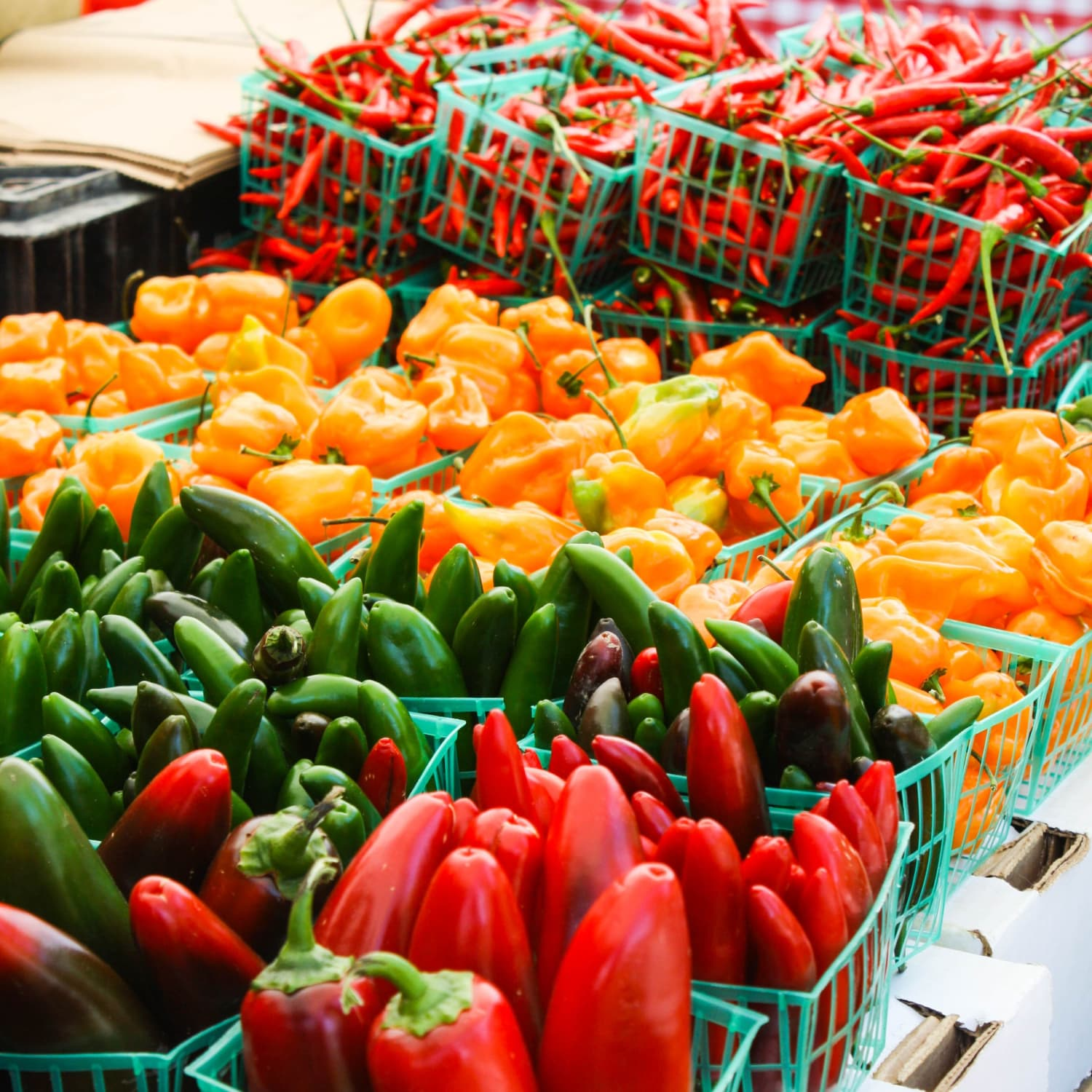 A Guide to Common Hot Peppers | Kitchn