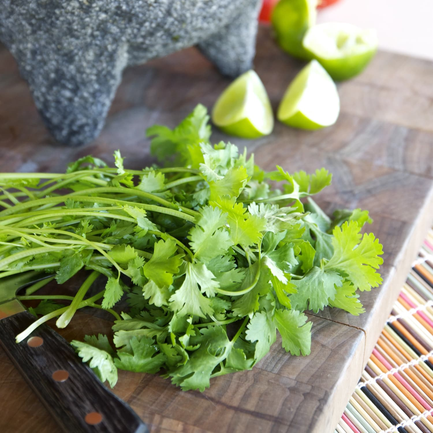 Everything You Need to Know About Growing Cilantro | Kitchn