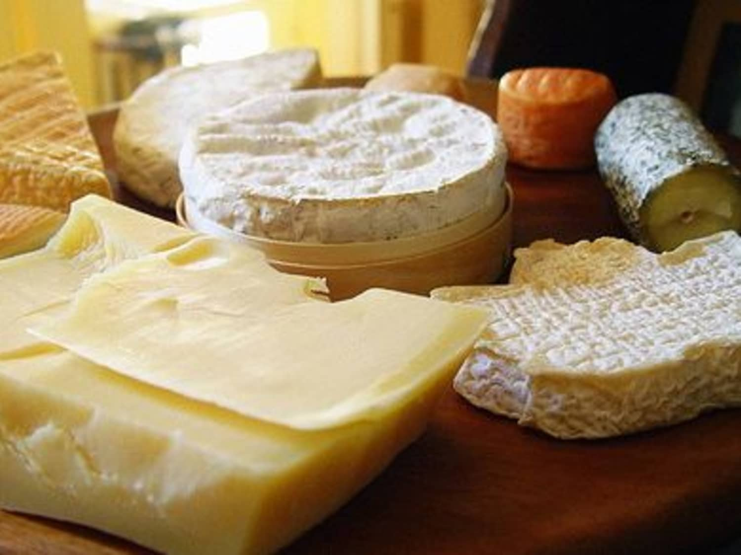 Cheese-Squeamish? Your Top Four Cheese Phobias Cured!   Kitchn
