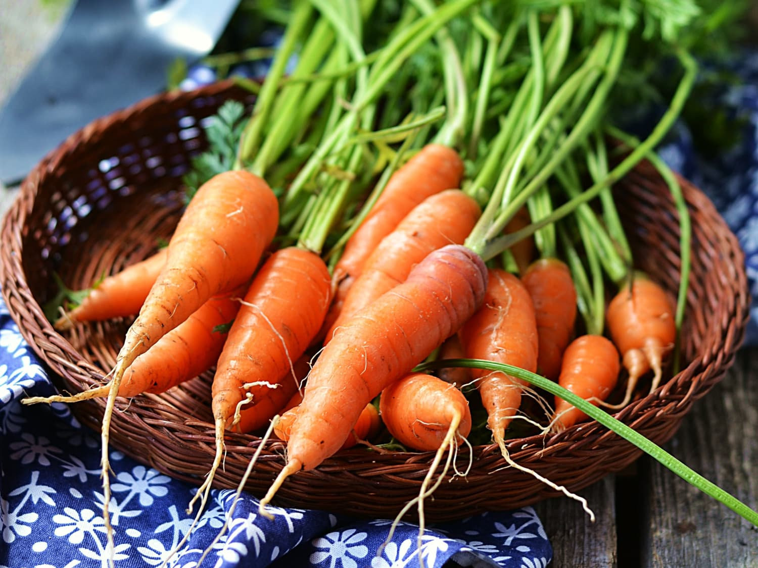 This Is Why Some Carrots Taste Soapy   Kitchn