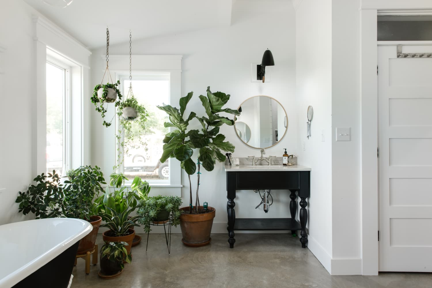 10 Tips to Help Your Houseplants Survive Fall & Winter