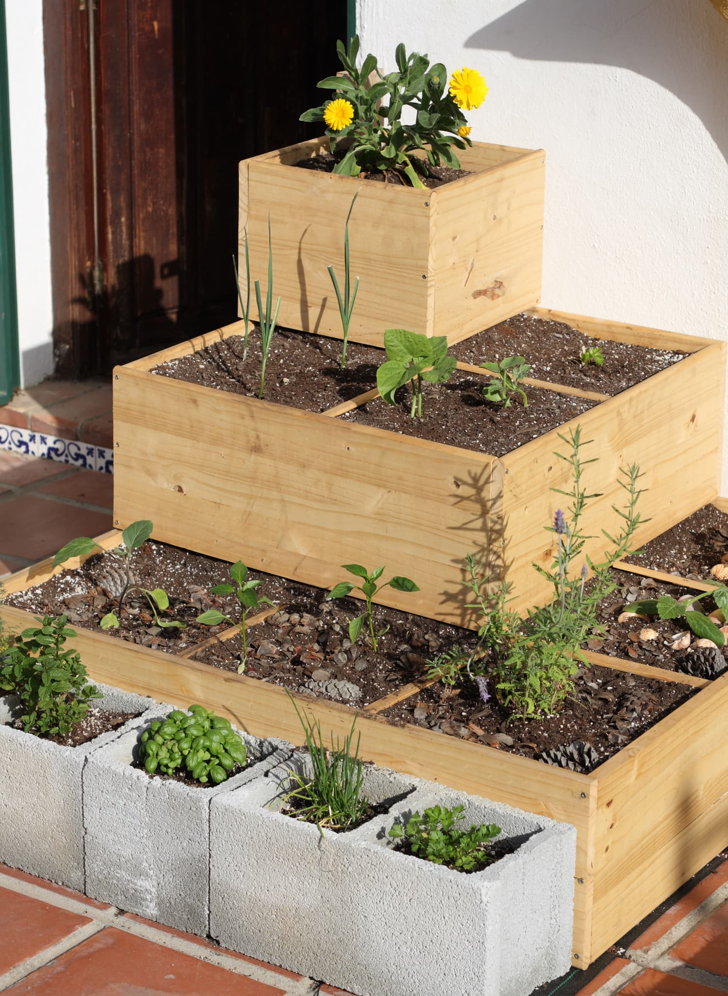 """Small Outdoor Space? Consider """"Square Foot Gardening"""""""