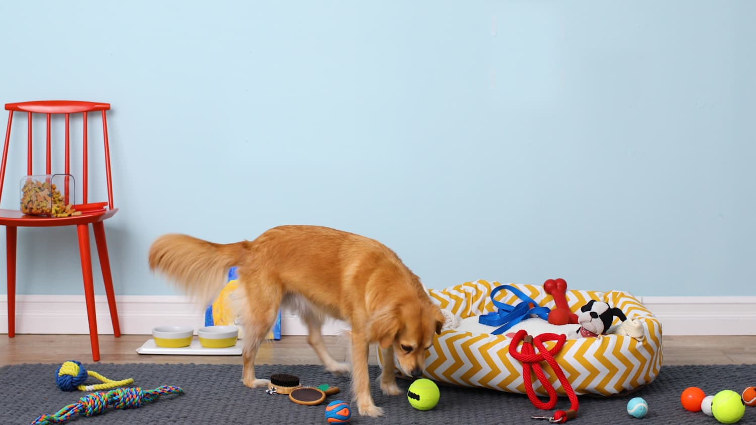 No More Fetching: Keep All Your Pet's Stuff Together in One Place