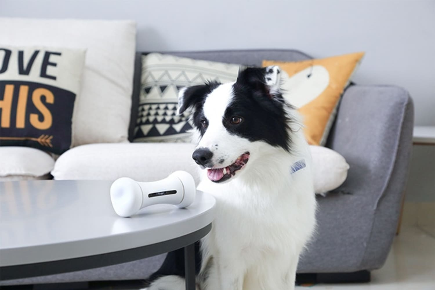 This Robot Dog Toy Wants to Help Your Pet's Anxiety When You're Busy