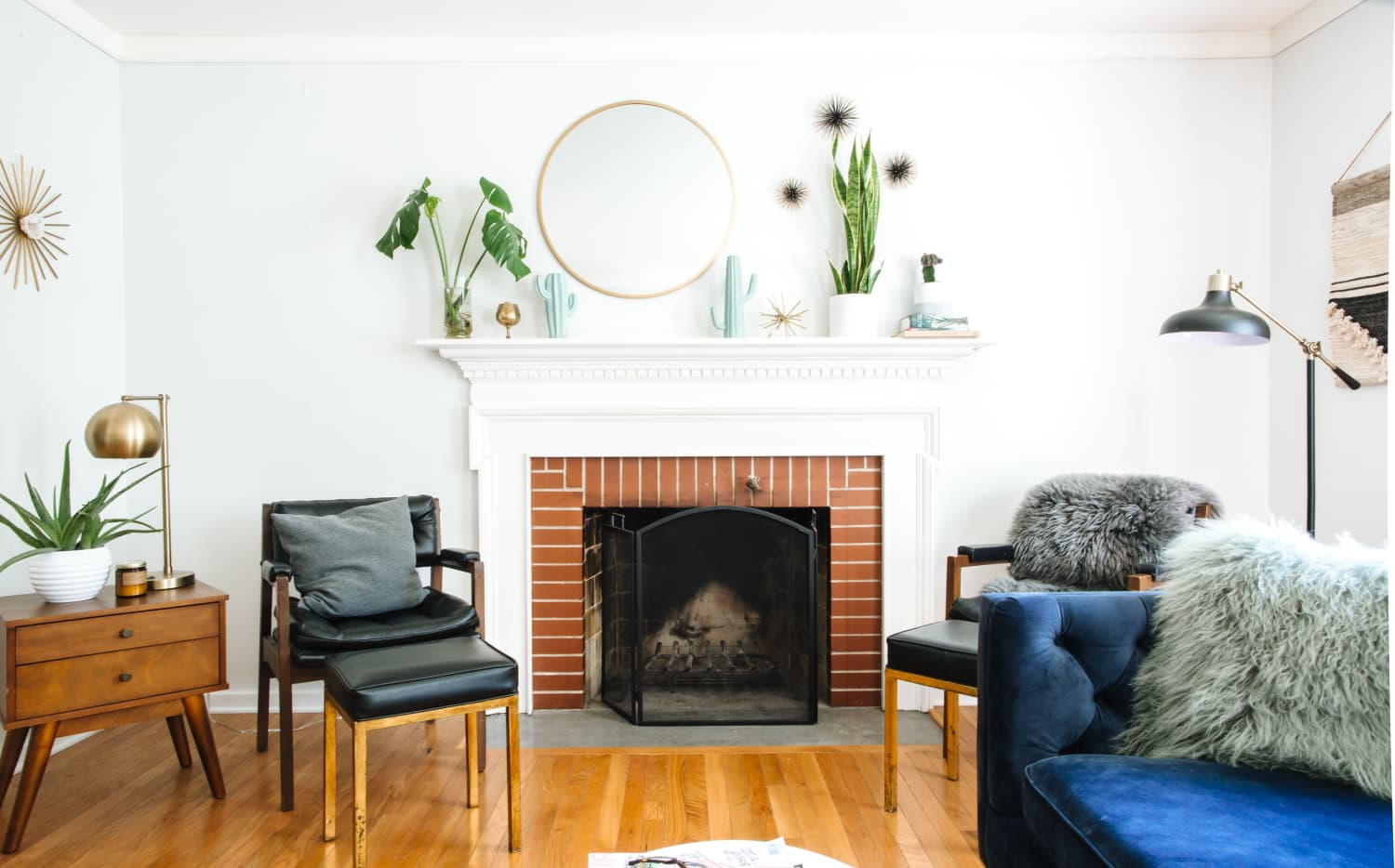 These Are the Best Plants for Your Living Room | Apartment Therapy