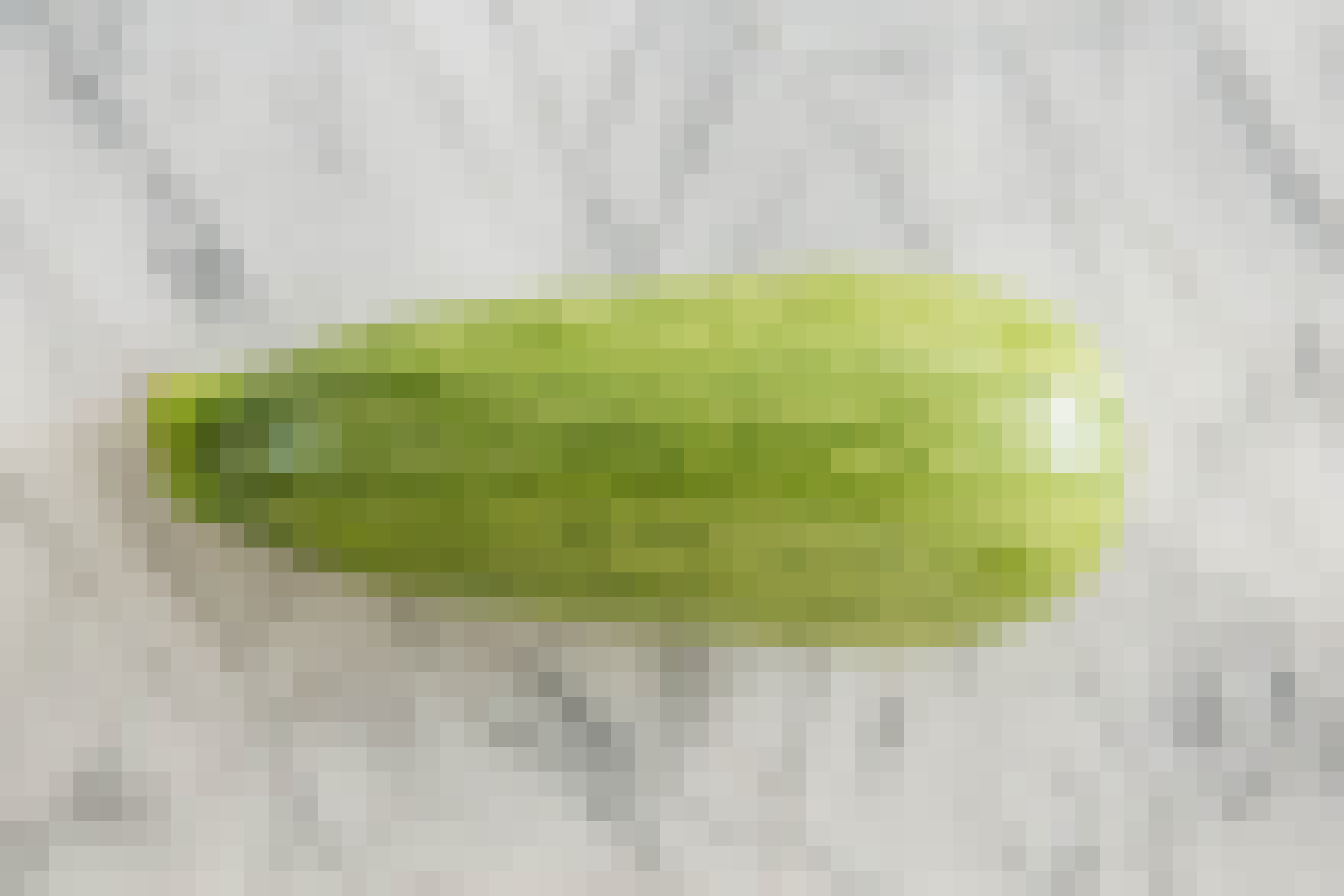 A Visual Guide to 8 Varieties of Summer Squash: gallery image 7