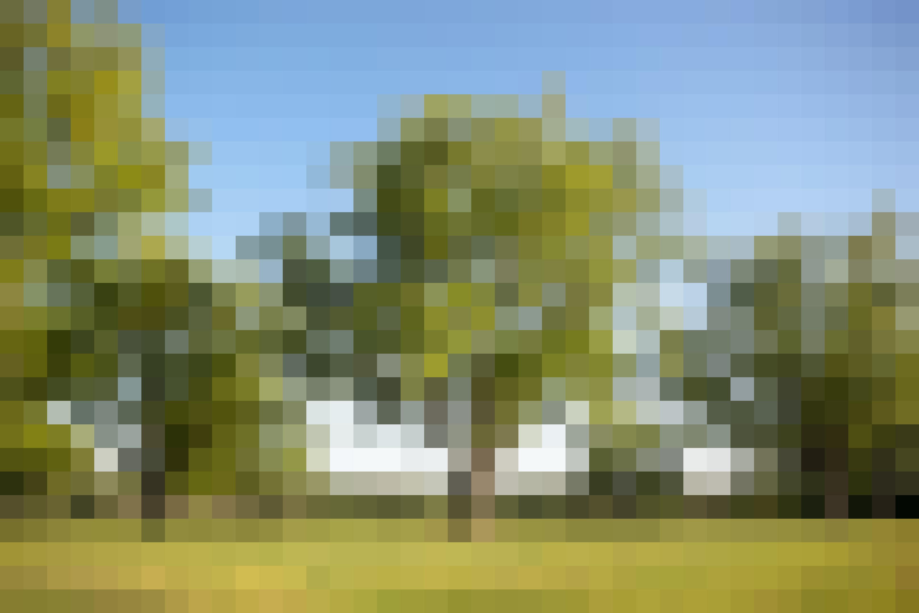 How Tucker Pecans Grows Pecans in Montgomery, Alabama: gallery image 1