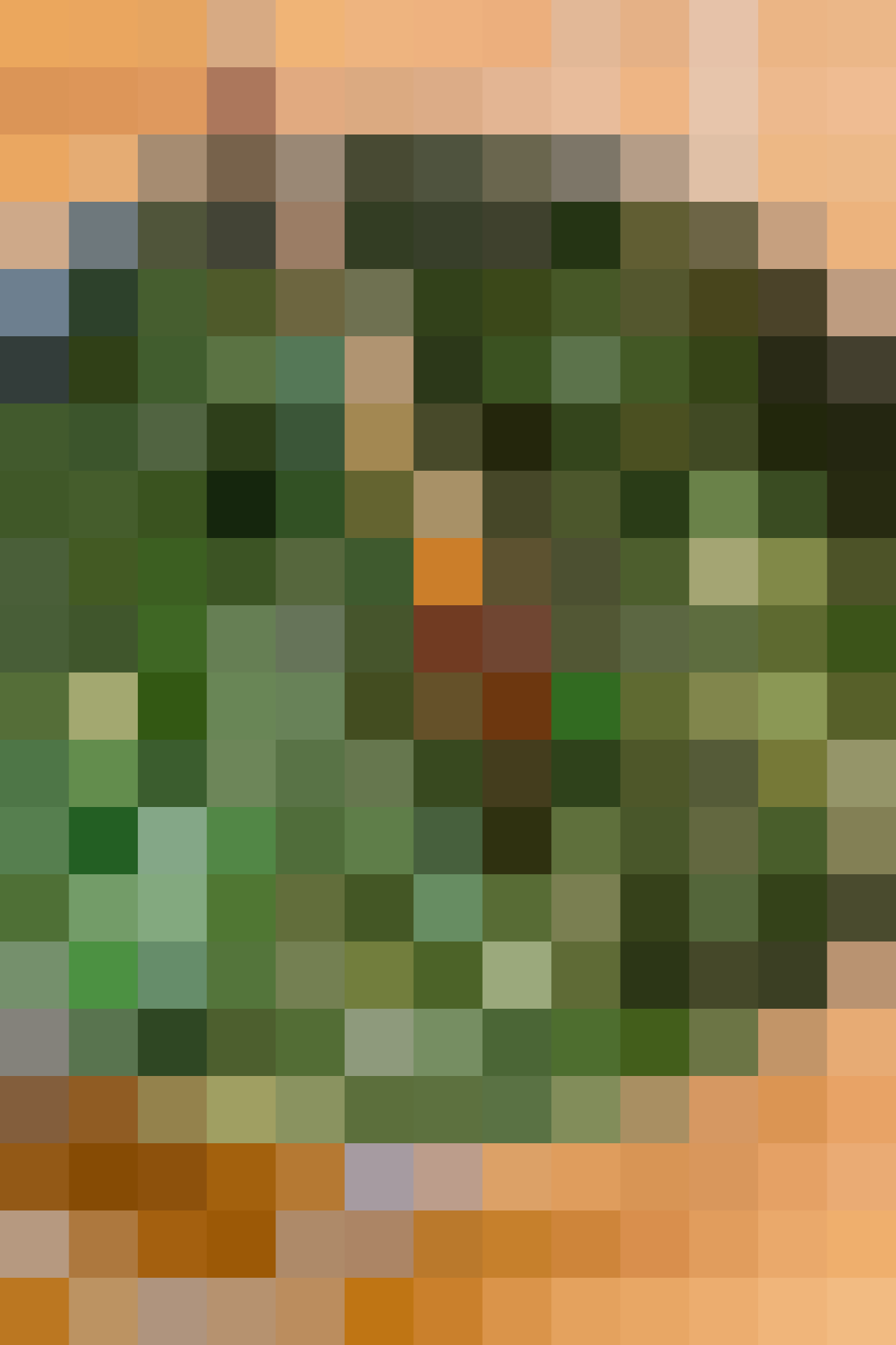 How To Make Classic Spanakopita: gallery image 4