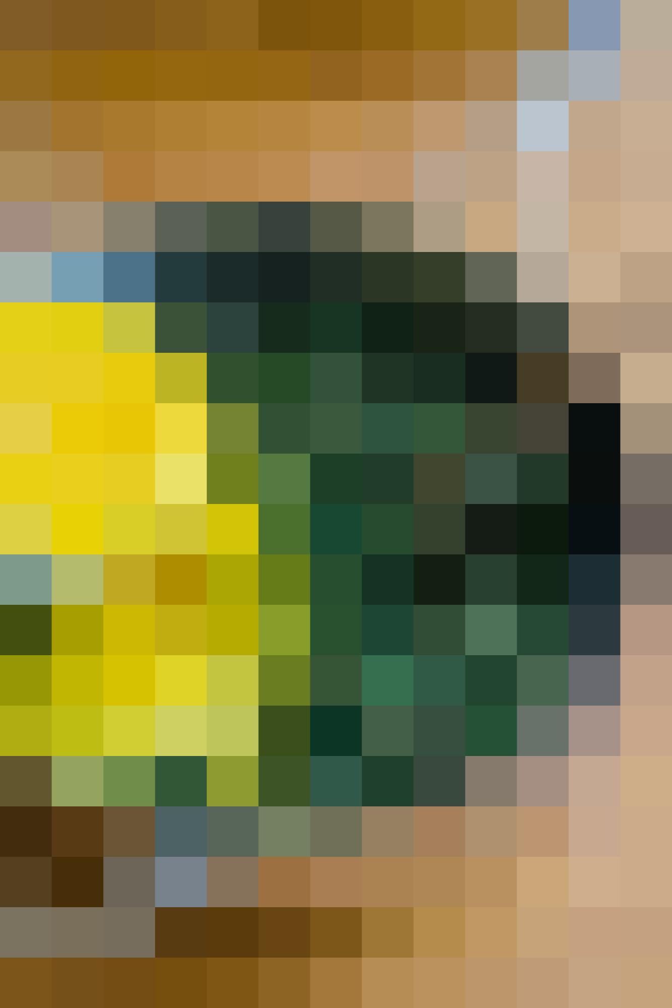 How To Make Classic Spanakopita: gallery image 5