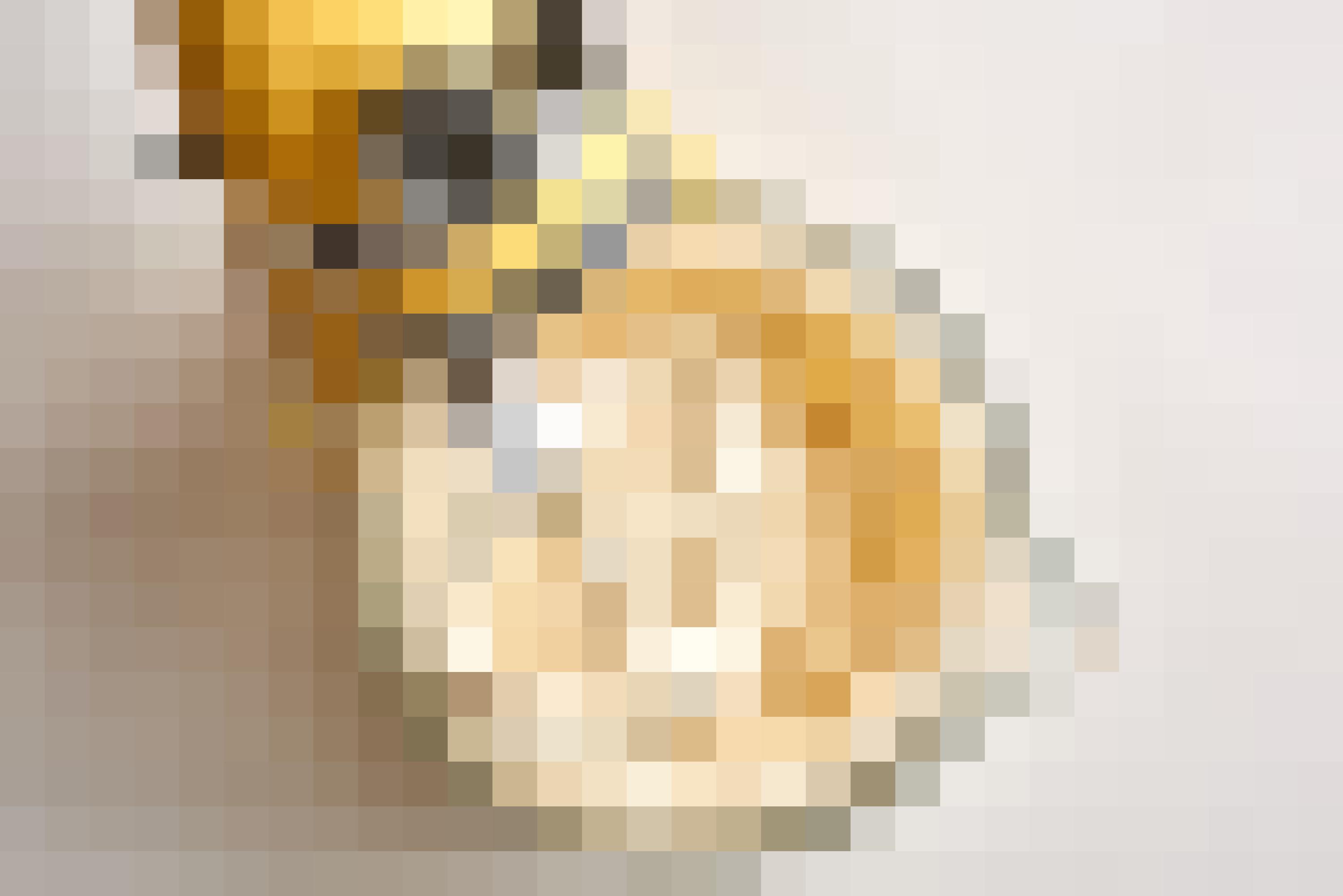 How To Make Pumpkin Cheesecake: gallery image 6