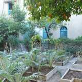 Vegetable garden and fruit trees