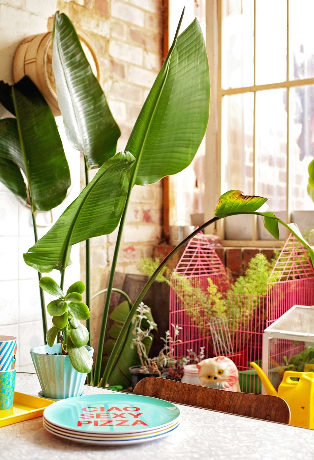 When Things Feel Out of Control: Where to Look to Get Your Home (& Life) Back on Track
