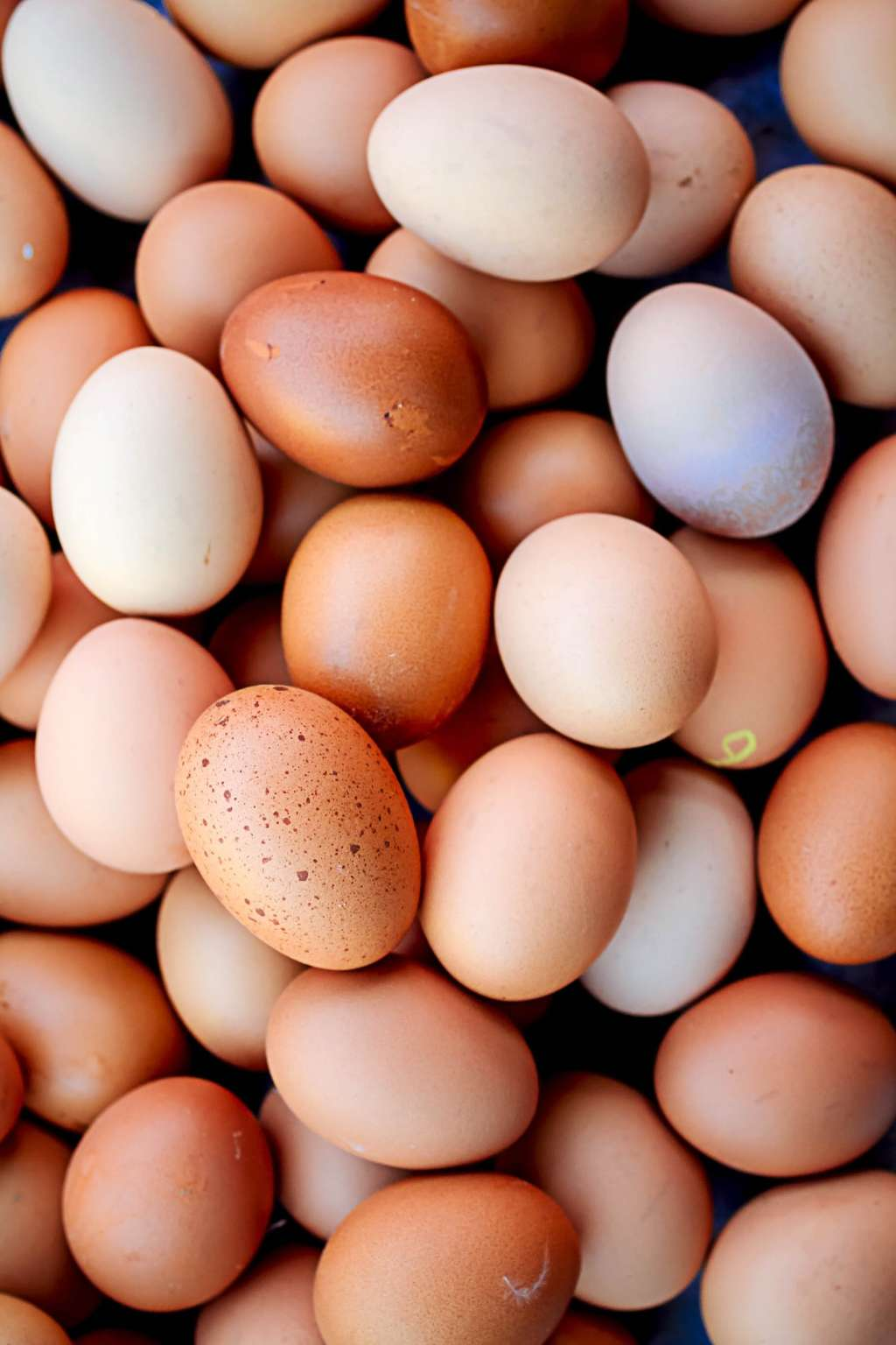 How Long Can You Keep Eggs?