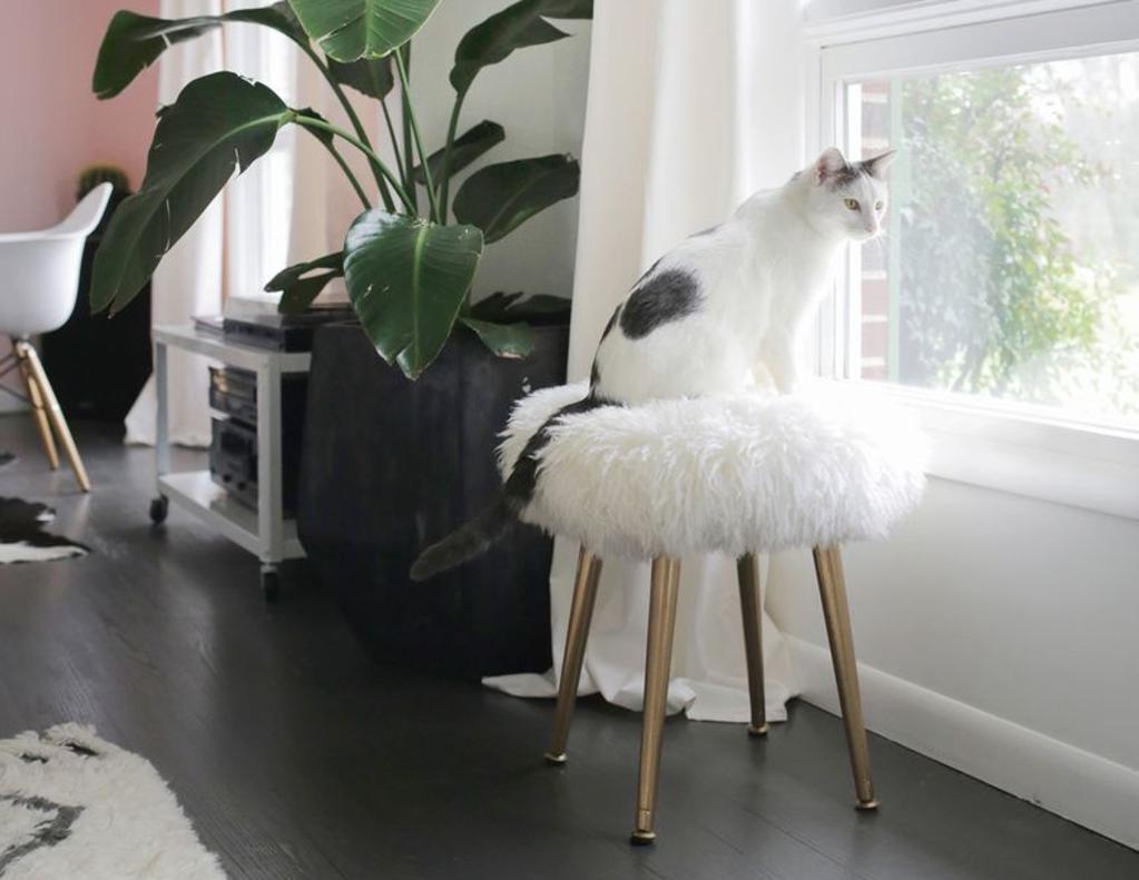 10 DIYs to Make Any Dorm Room Feel More Like Home