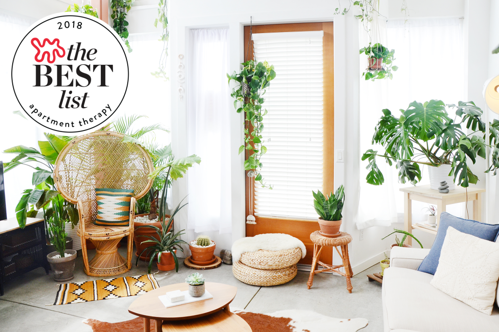 The Very Best Indoor House Plants You Can Buy