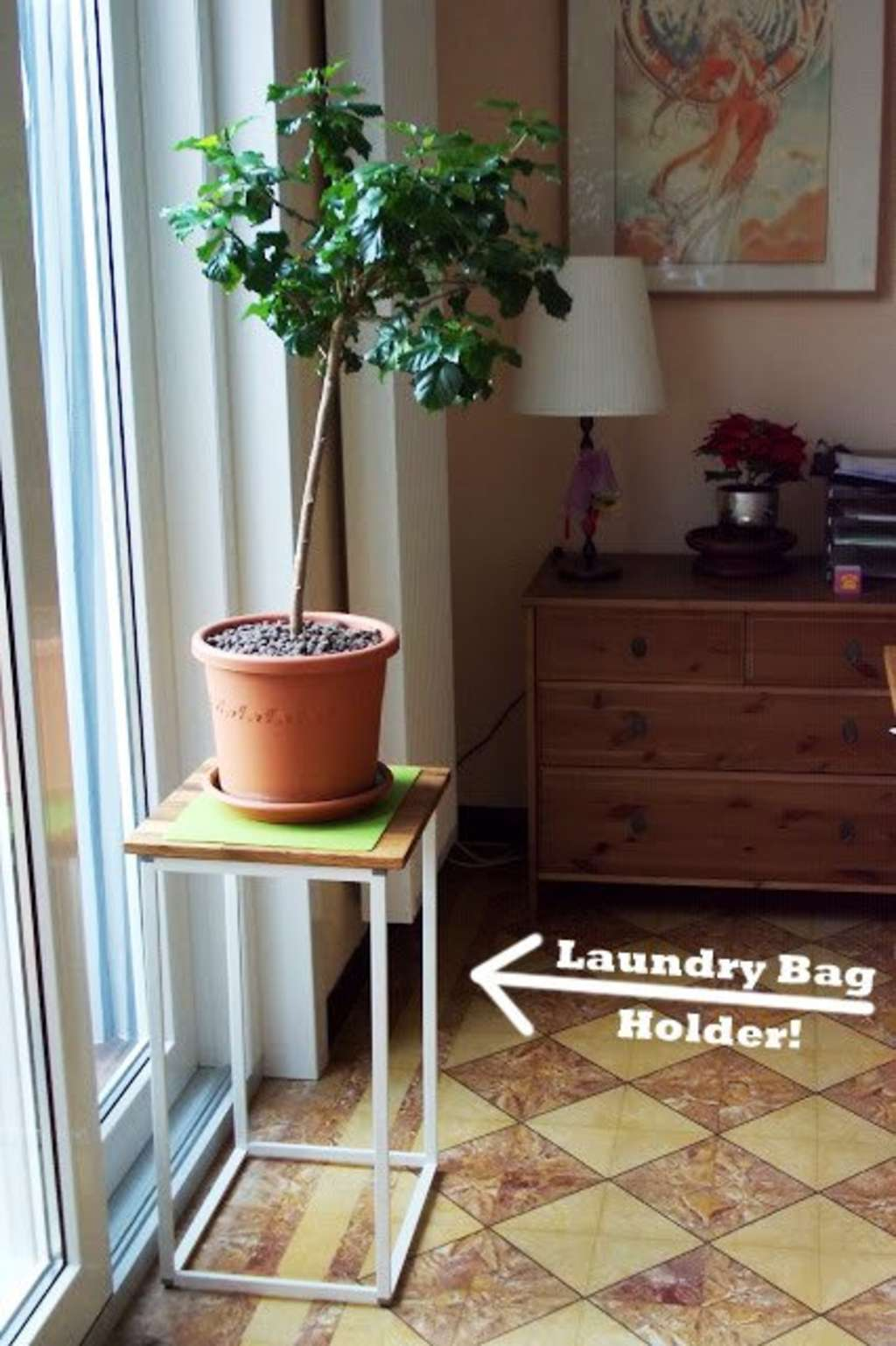 Make A Modern Plant Stand On The Cheap