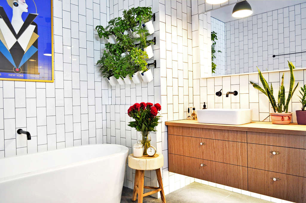 10 Plants that Thrive in Humid Spots (a.k.a. Your Bathroom)