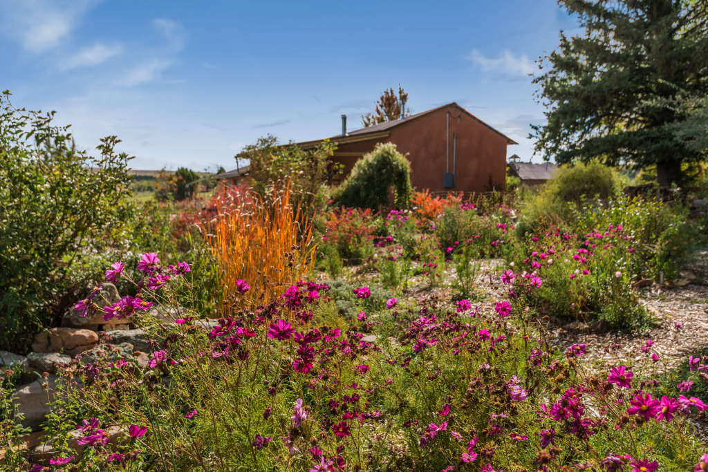 Look Inside: A $647K New Mexico Home on 60 Acres of Organic Land