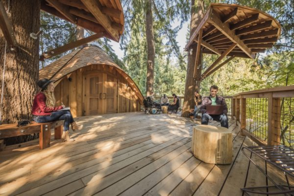 Cool Job Perks: Microsoft Built Its Employees a Treehouse