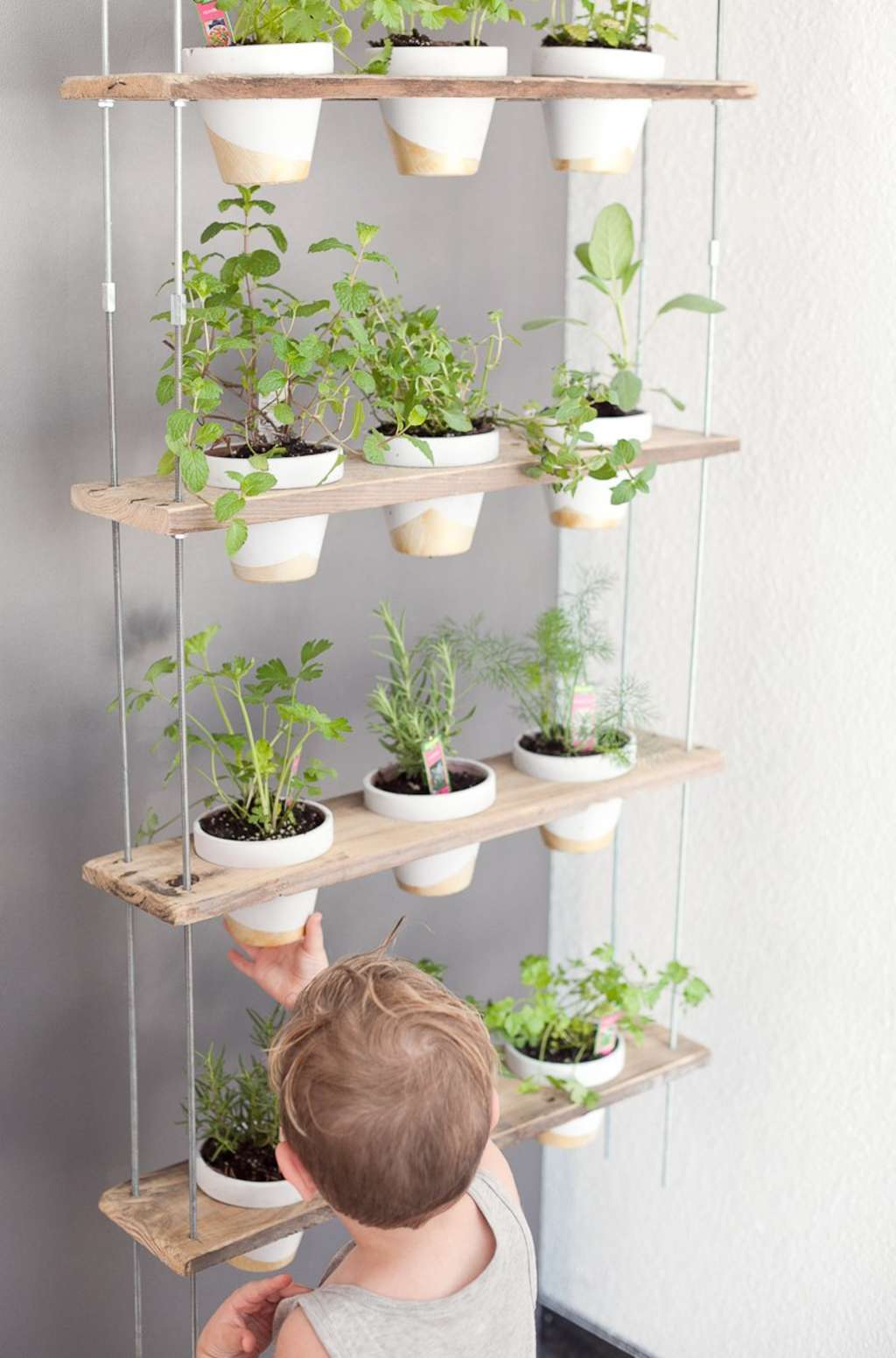 An Easy & Stylish DIY Herb Wall for Your Kitchen