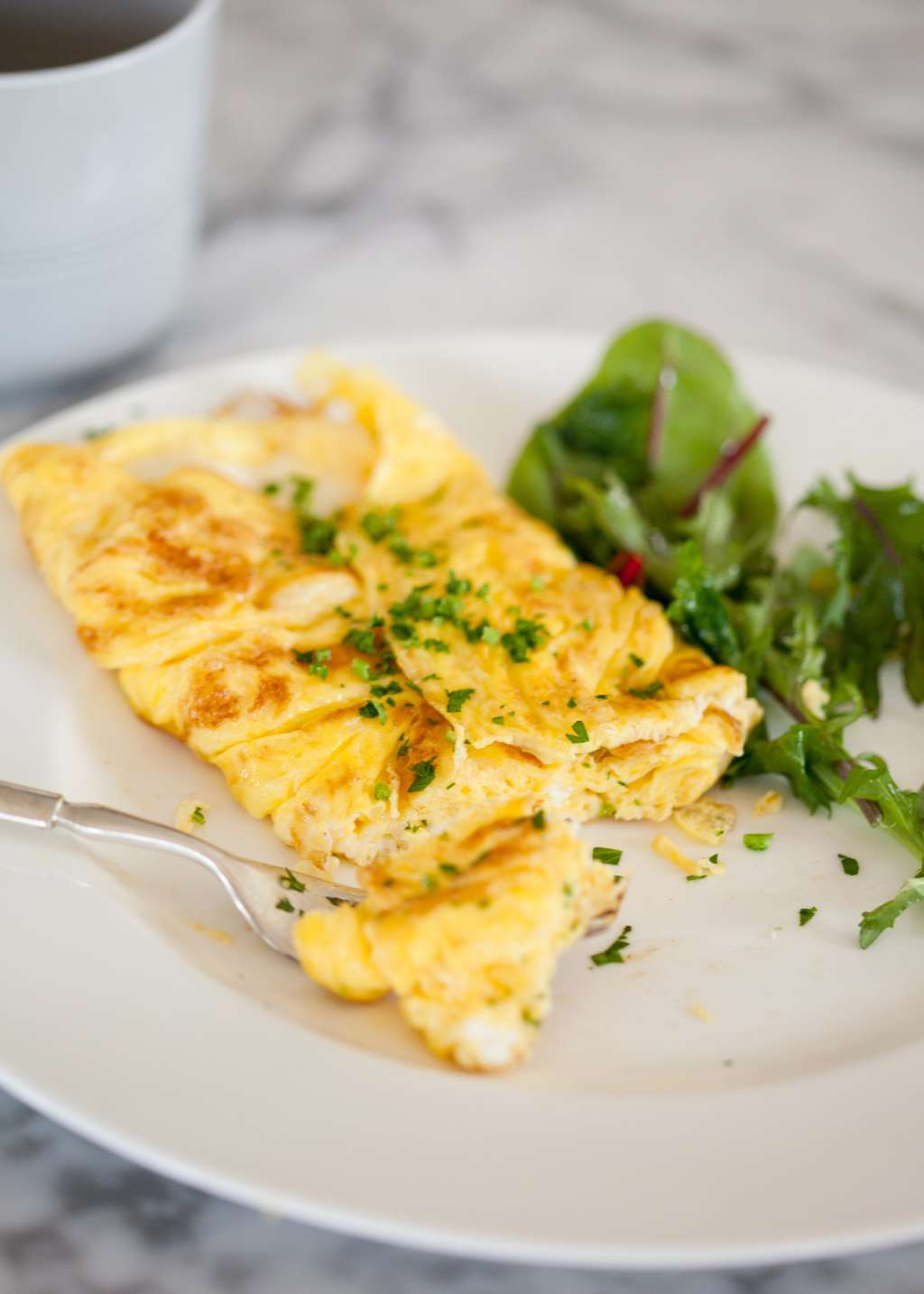 How To Make An Omelet Step By Step Recipe Kitchn